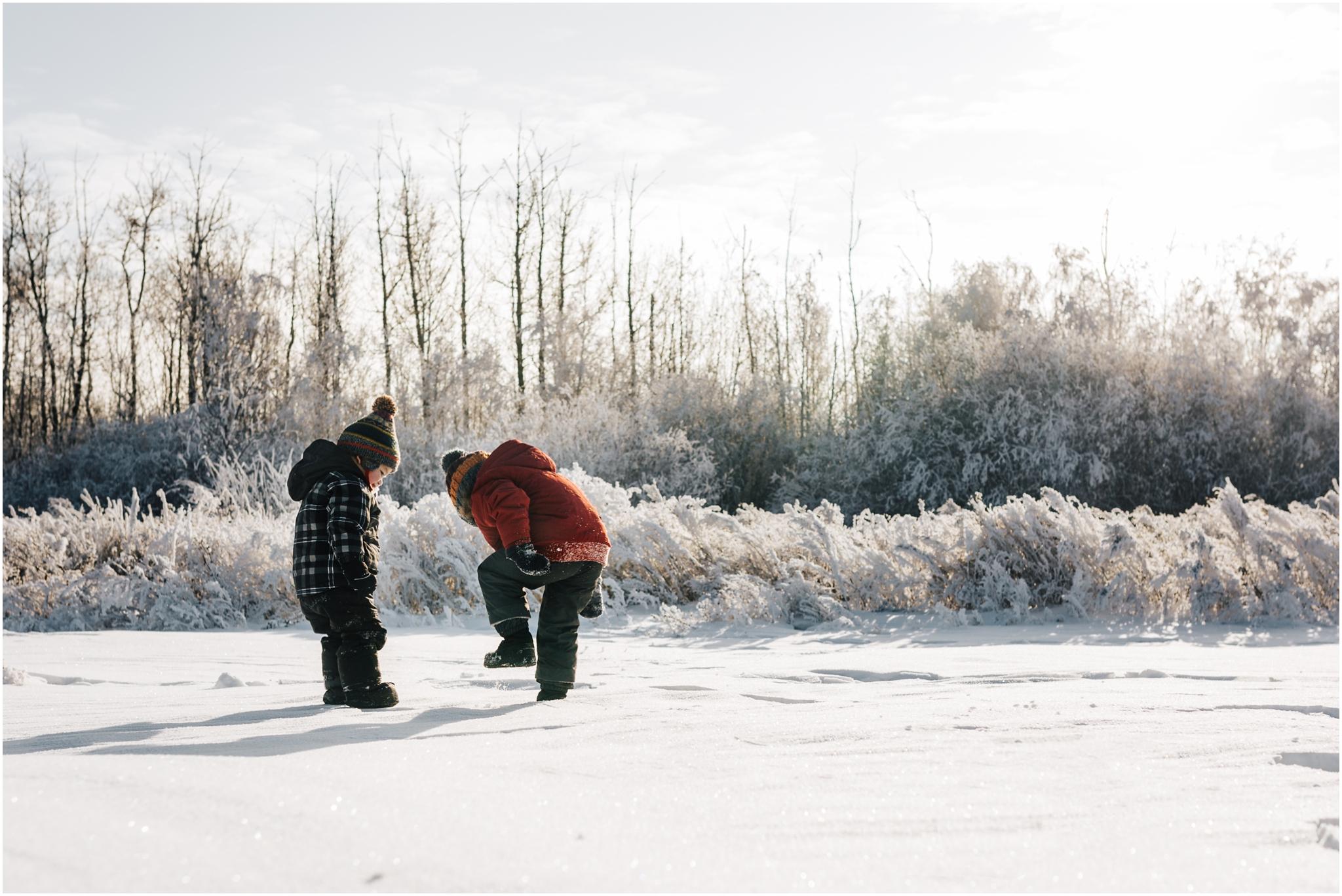 Treelines Photography - Edmonton Lifestyle Photographer - winter snow