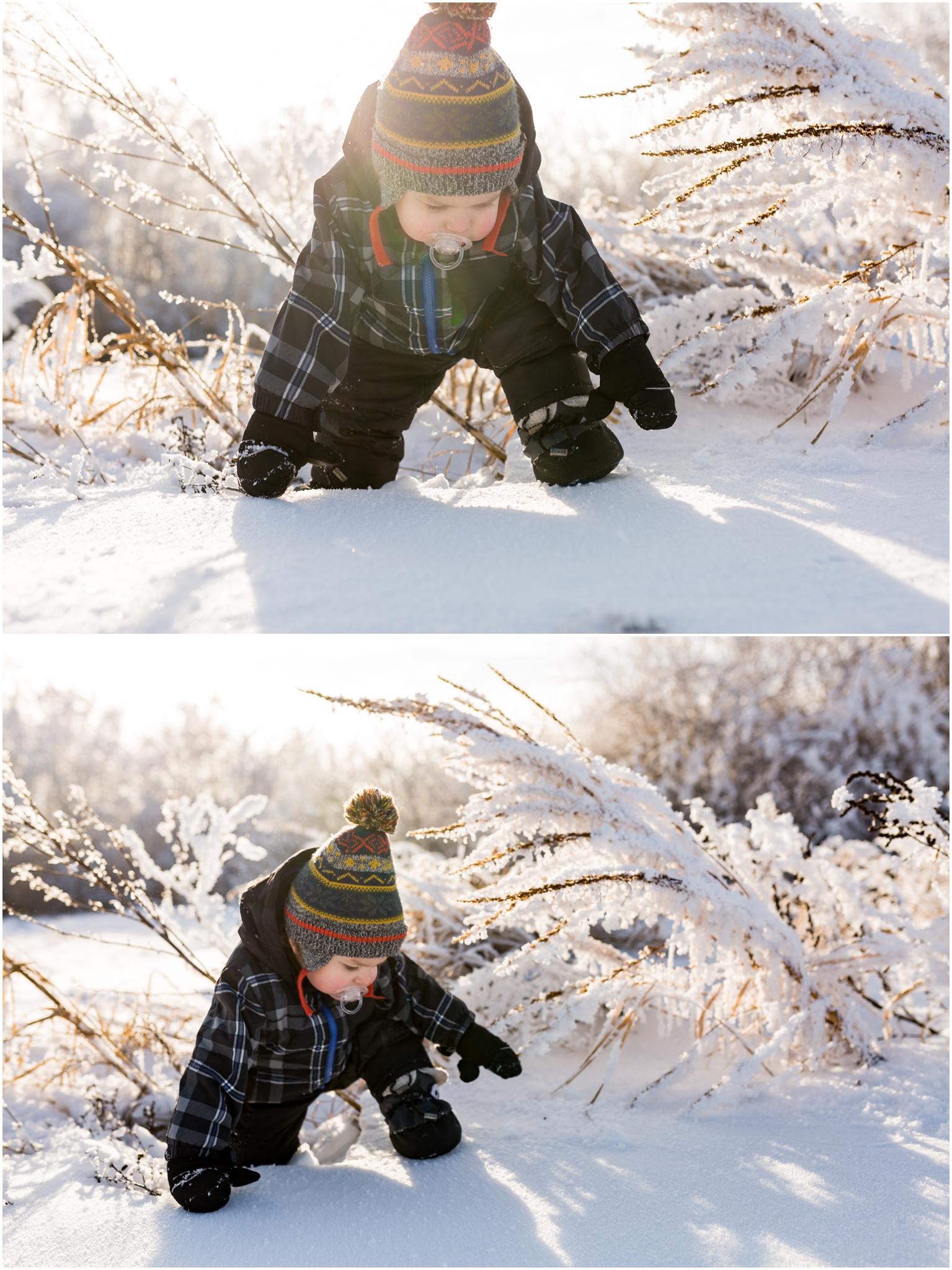 Treelines Photography - Edmonton Photographer - Toddler in Snow