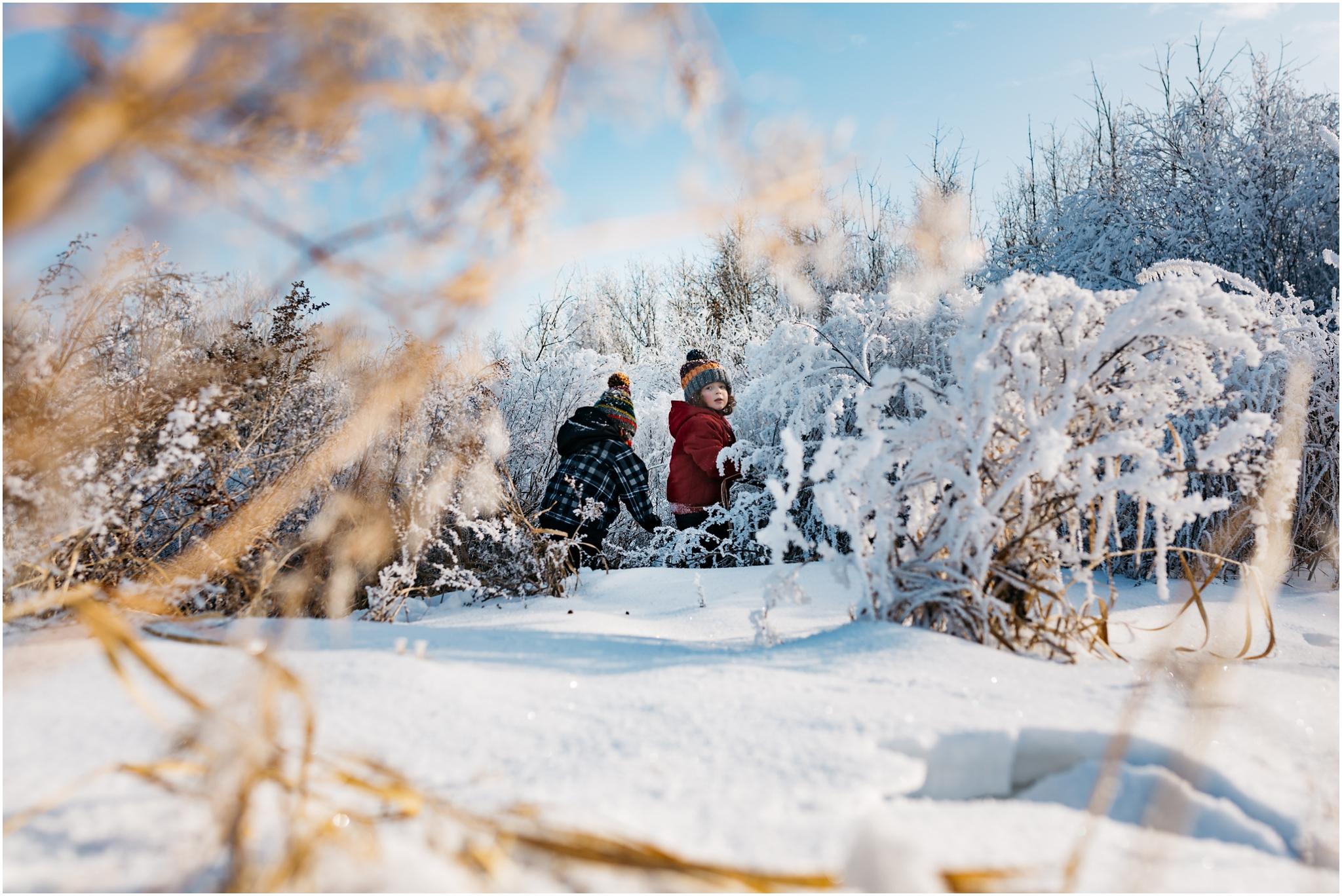 Treelines Photography - Edmonton Outdoor Photographer