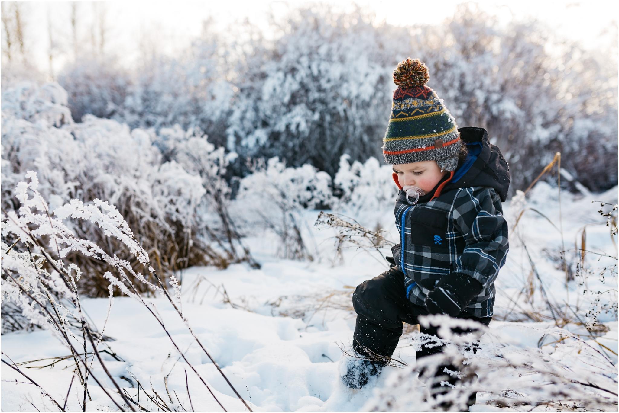 Treelines Photography - Edmonton Children Photographer