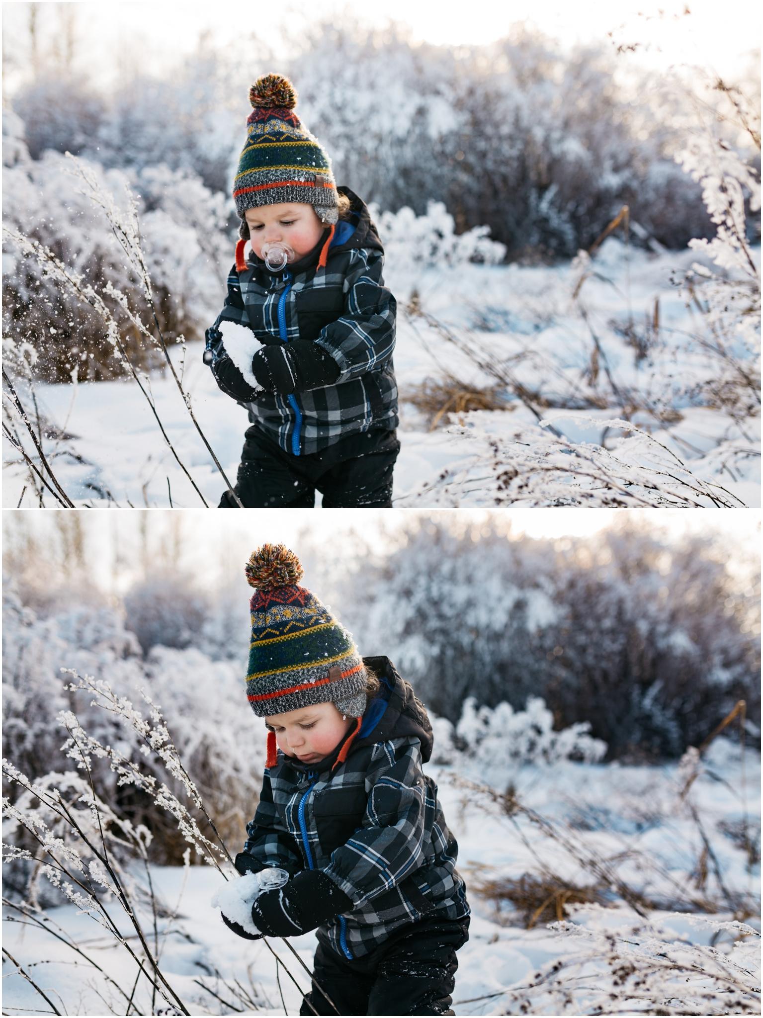 Treelines Photography - Edmonton Photographer - Snow Play - Edmonton Hoar Frost