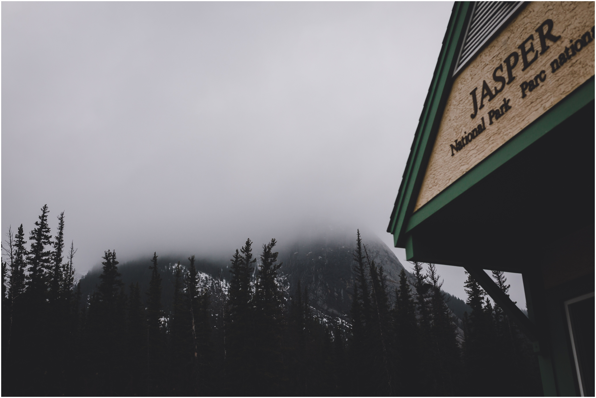 Jasper Alberta - Jasper National Park - Treelines Photography