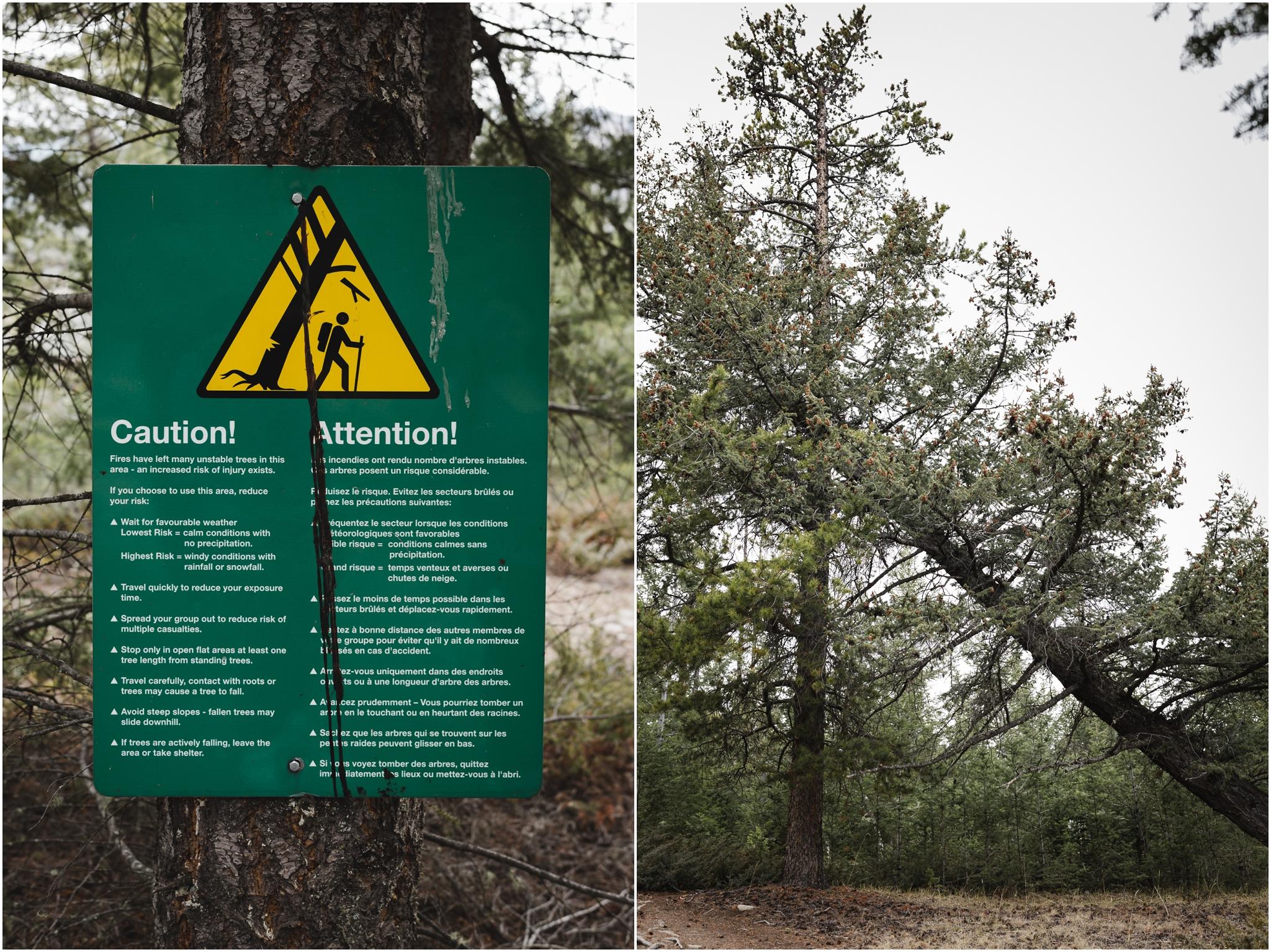 Jasper National Park - Hiking - Old Fort Point - Rocky Mountains - Treelines Photography - Edmonton Photographer