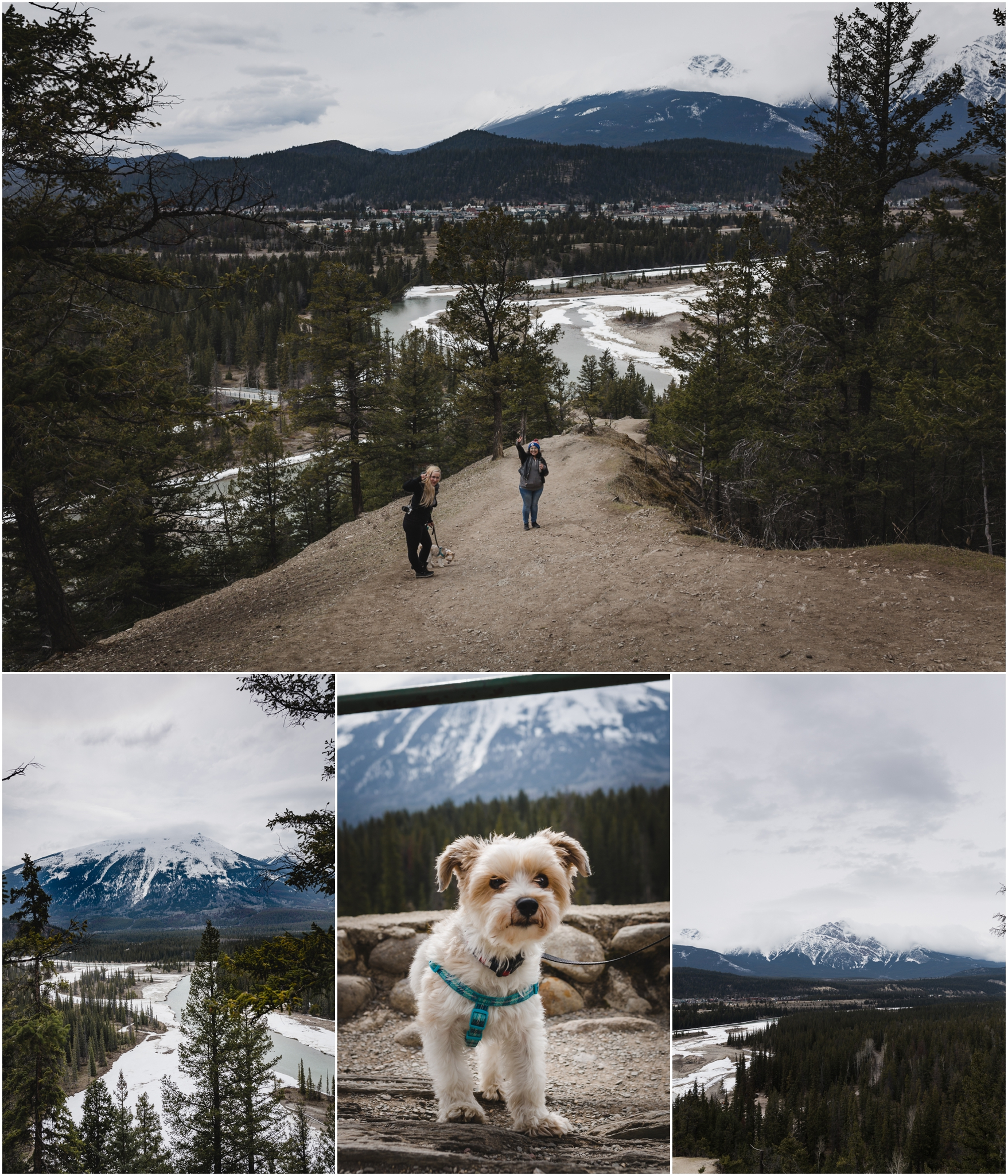 Edmonton Travel Photographer - Jasper National Park - Alberta Canada - Rocky Mountains - Athabasca River - Forests - Treelines Photography