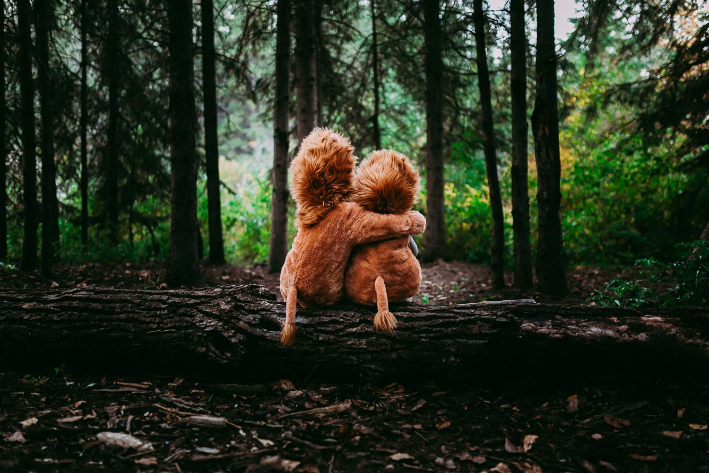 Treelines Photography - Edmonton Photographer - Personal -17.jpg