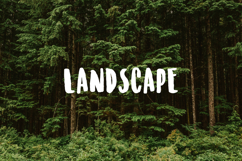 Treelines Photography - Landscape.jpg