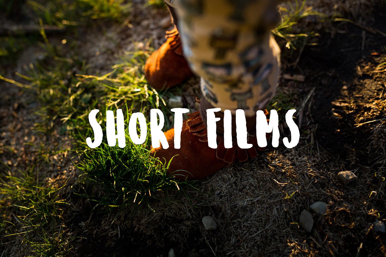 Treelines Photography - Short Films