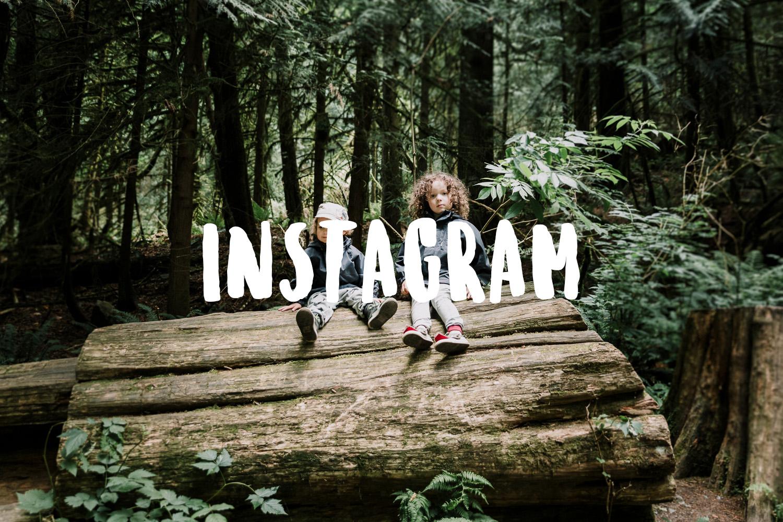 Treelines Photography - Instagram