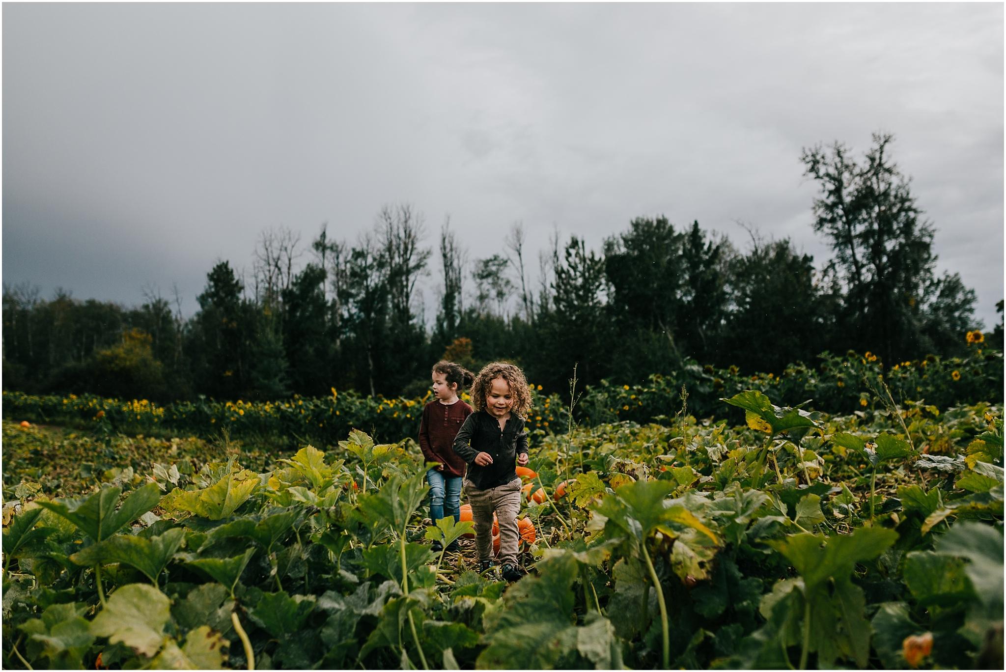 Edmonton Photographer - U-Pick Pumpkins - Treelines Photography - Somerset Farms