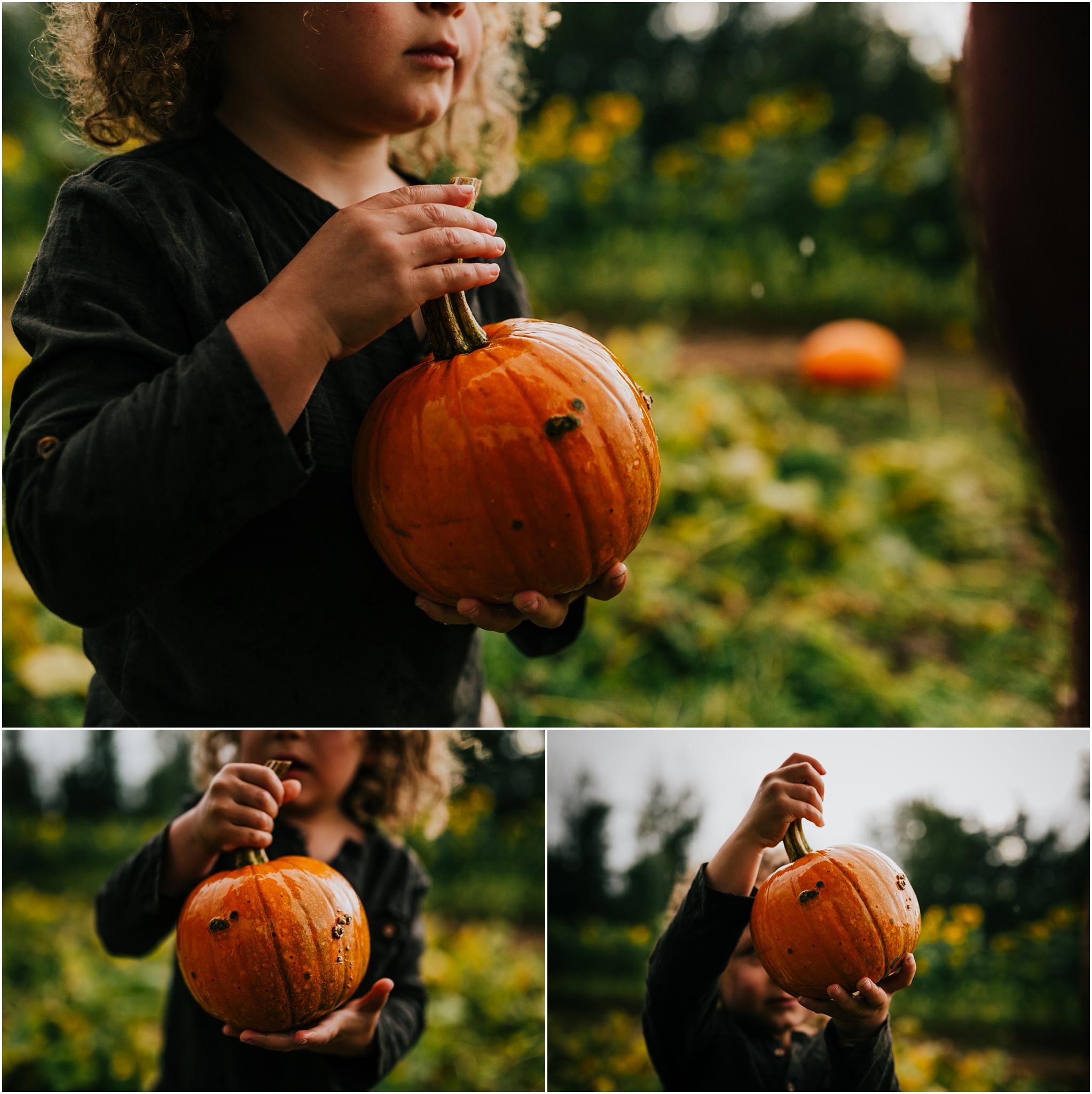 Treelines Photography - Edmonton Photographer - Edmonton Lifestyle Photographer - Pumpkin Picking Edmonton - Pumpkin Patch - Fall Activities