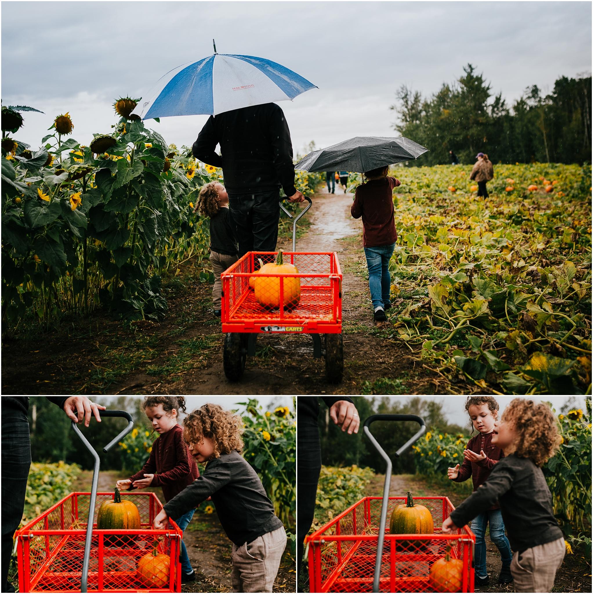 Edmonton Lifestyle Photographer - Edmonton Pumpkin Picking - Somerset Farms