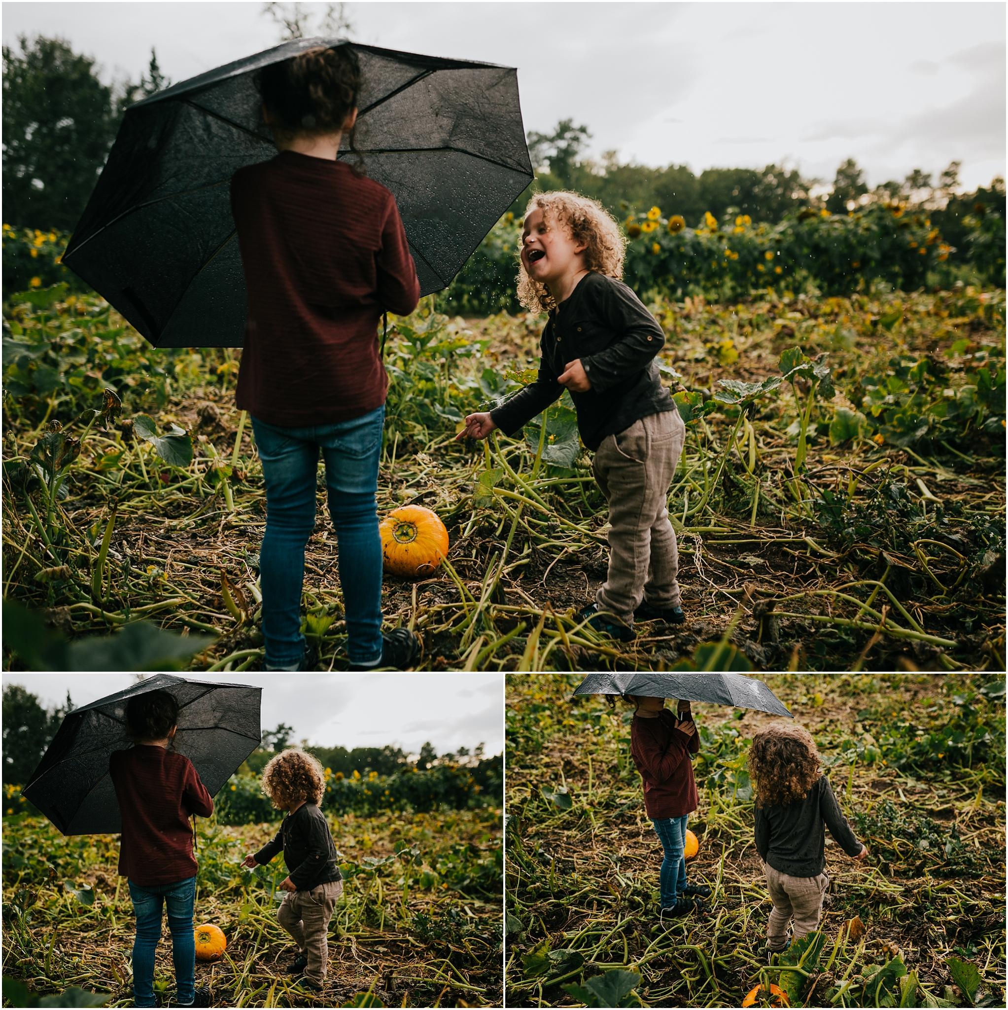 Edmonton Lifestyle Photographer - Parkland County Pumpkin Picking - Somerset Farms
