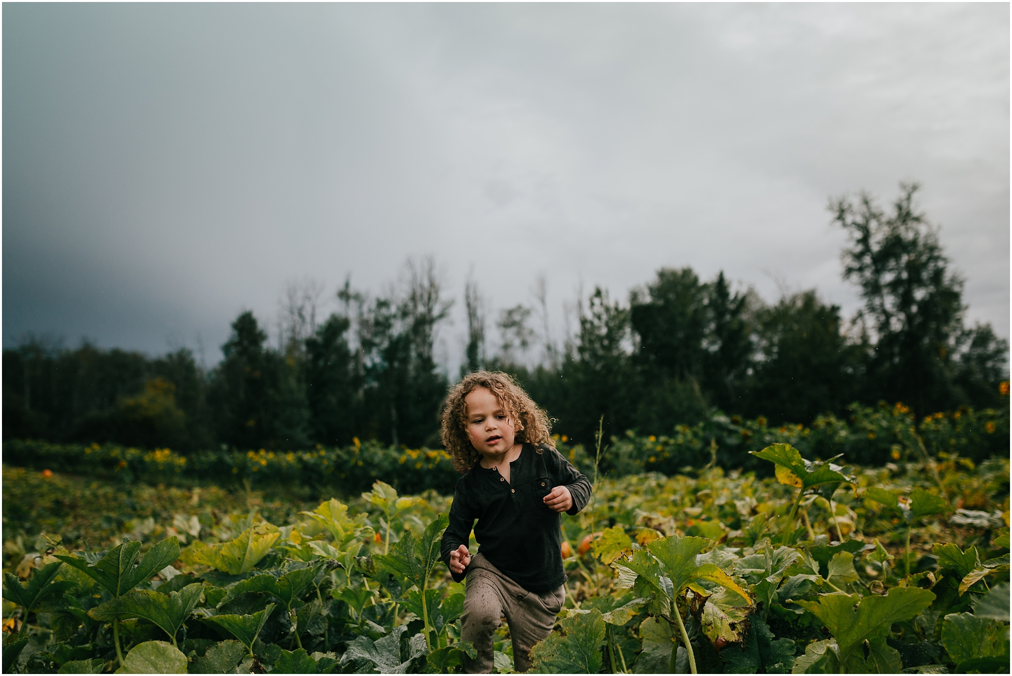 Treelines Photography - Edmonton Family Photographer - Pumpkin Patch - Best Fall Activities in Edmonton