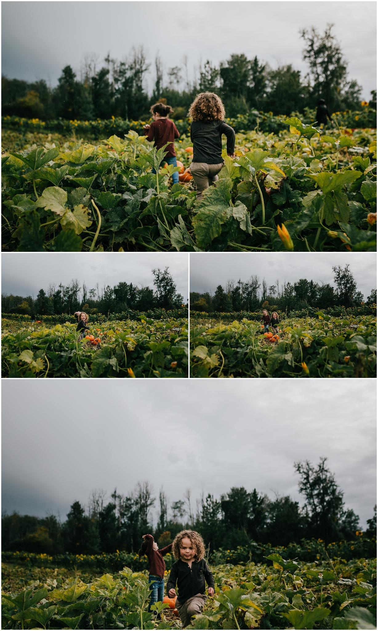 Treelines Photography - Edmonton Family Photographer - Lifestyle Photography - Somerset Farms Pumpkin Picking