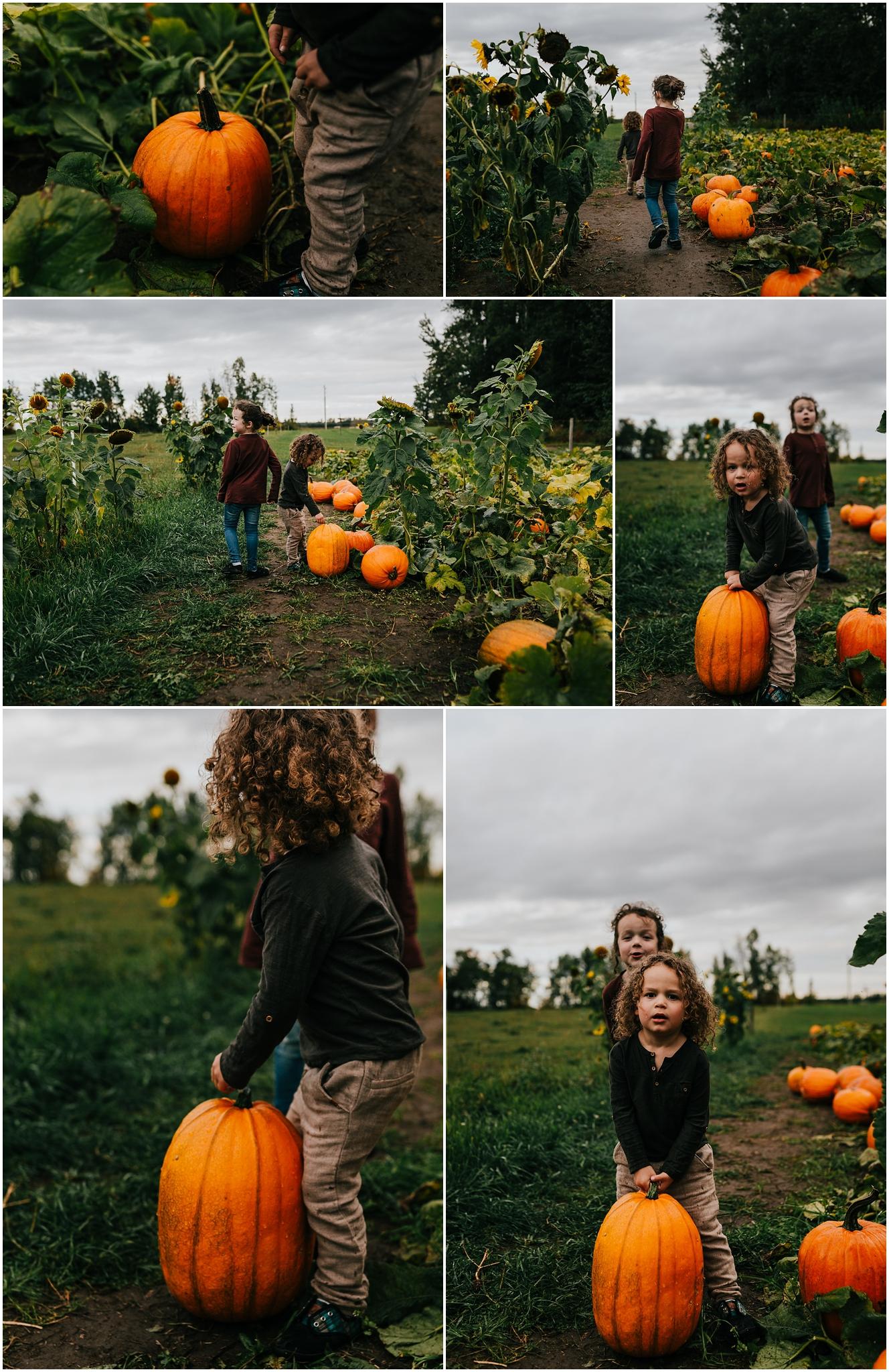 Edmonton Lifestyle Photographer - Treelines Photography - Edmonton Family Photographer - Family Photography - Somerset Farms