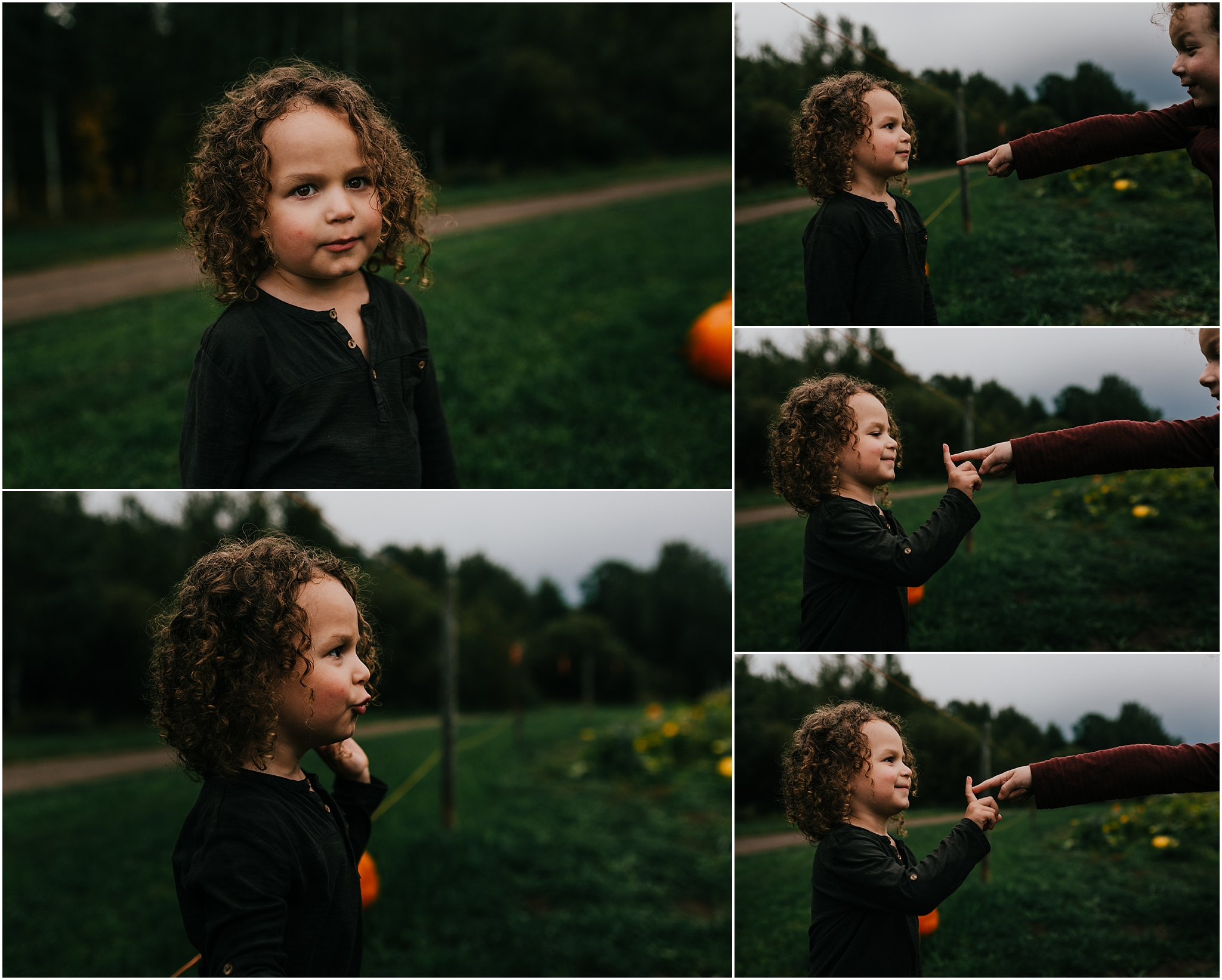 Treelines Photography - Edmonton Documentary Photographer - Pumpkin Patch Picking
