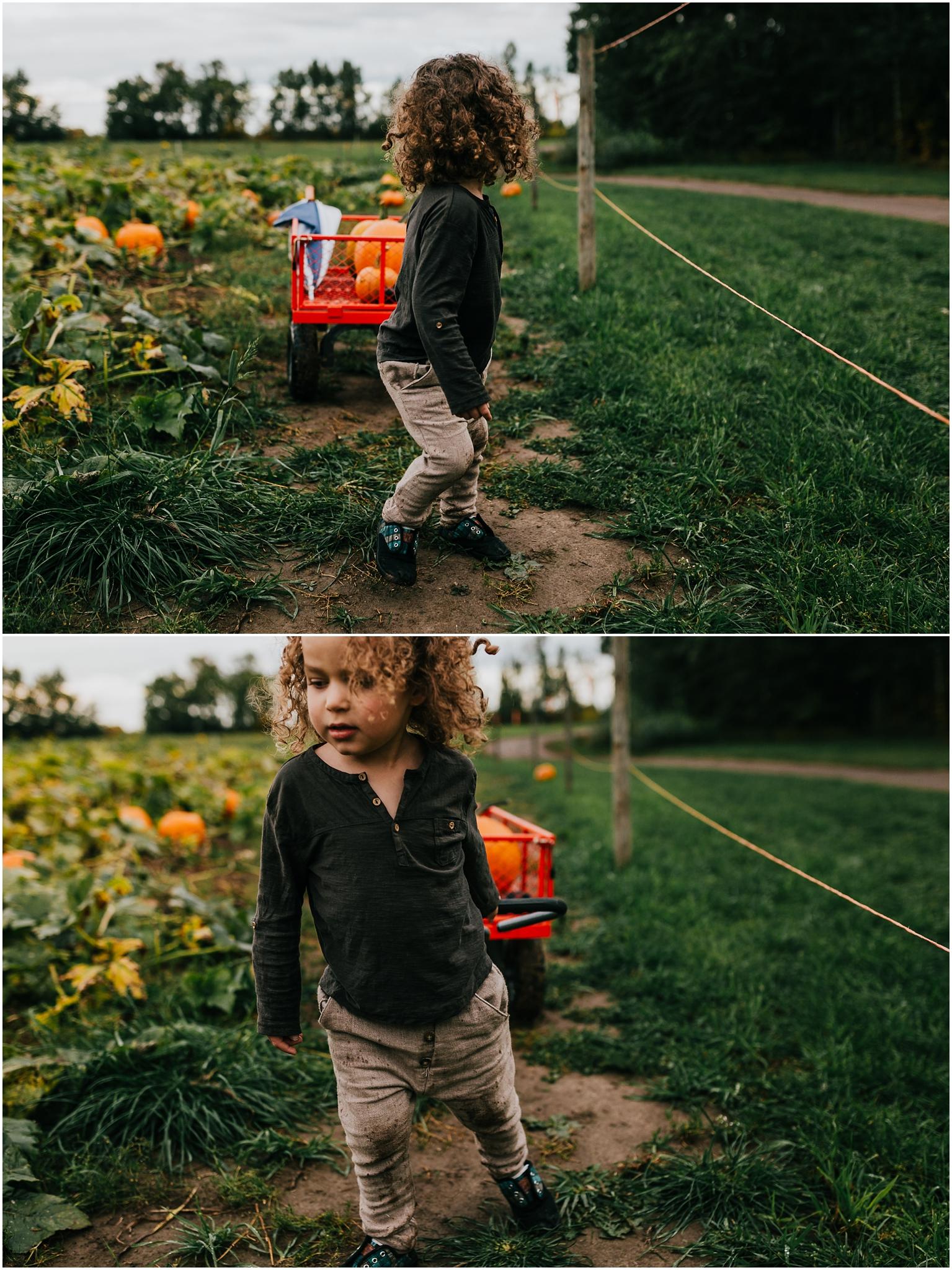 Edmonton Lifestyle Photographer - Treelines Photography - Edmonton Documentary Photographer - Pumpkin Picking Parkland County