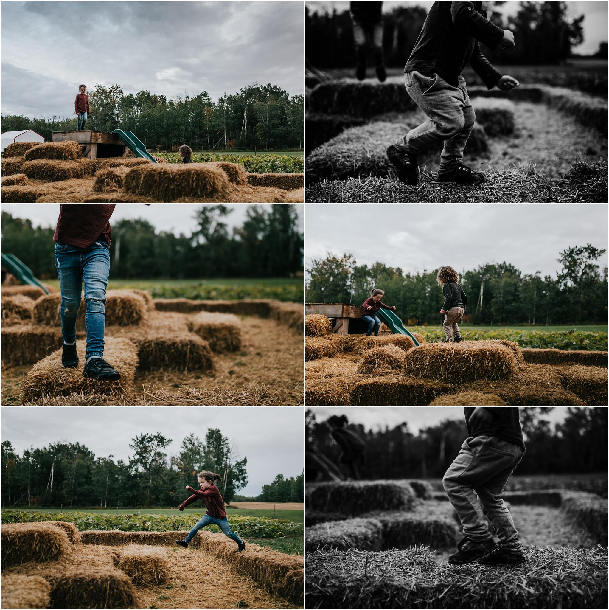 Edmonton Family Photographer - Treelines Photography