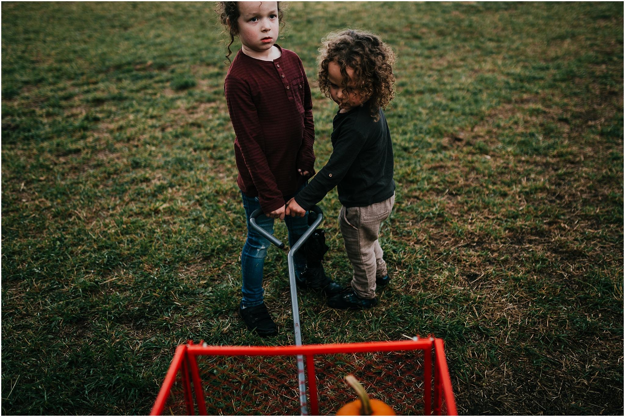 Treelines Photography - Edmonton Family Photographer