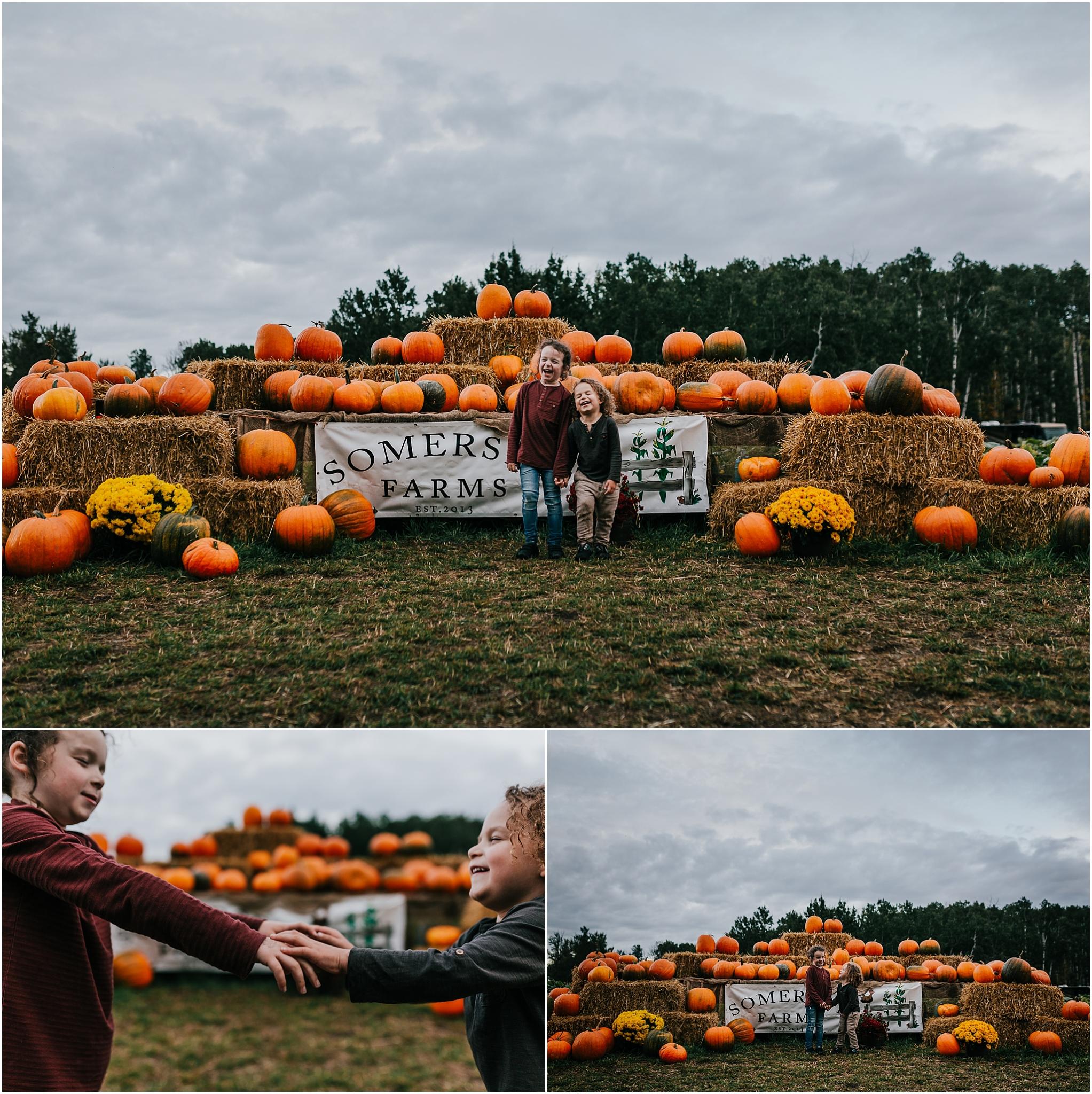 Treelines Photography - Edmonton Family Photographer - Edmonton Photographer - Pumpkin Patch U-Pick - Somerset Farms