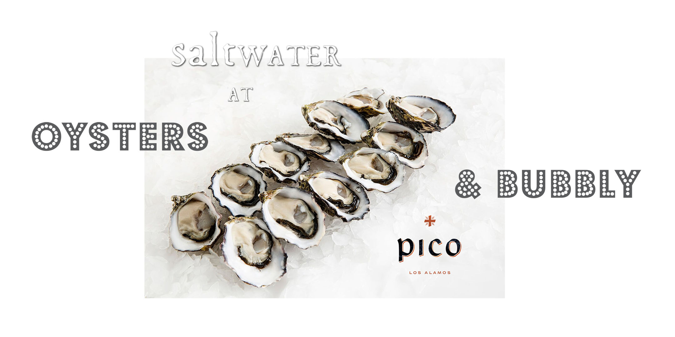 Saltwater_at_Pico1_ebrite2.jpg