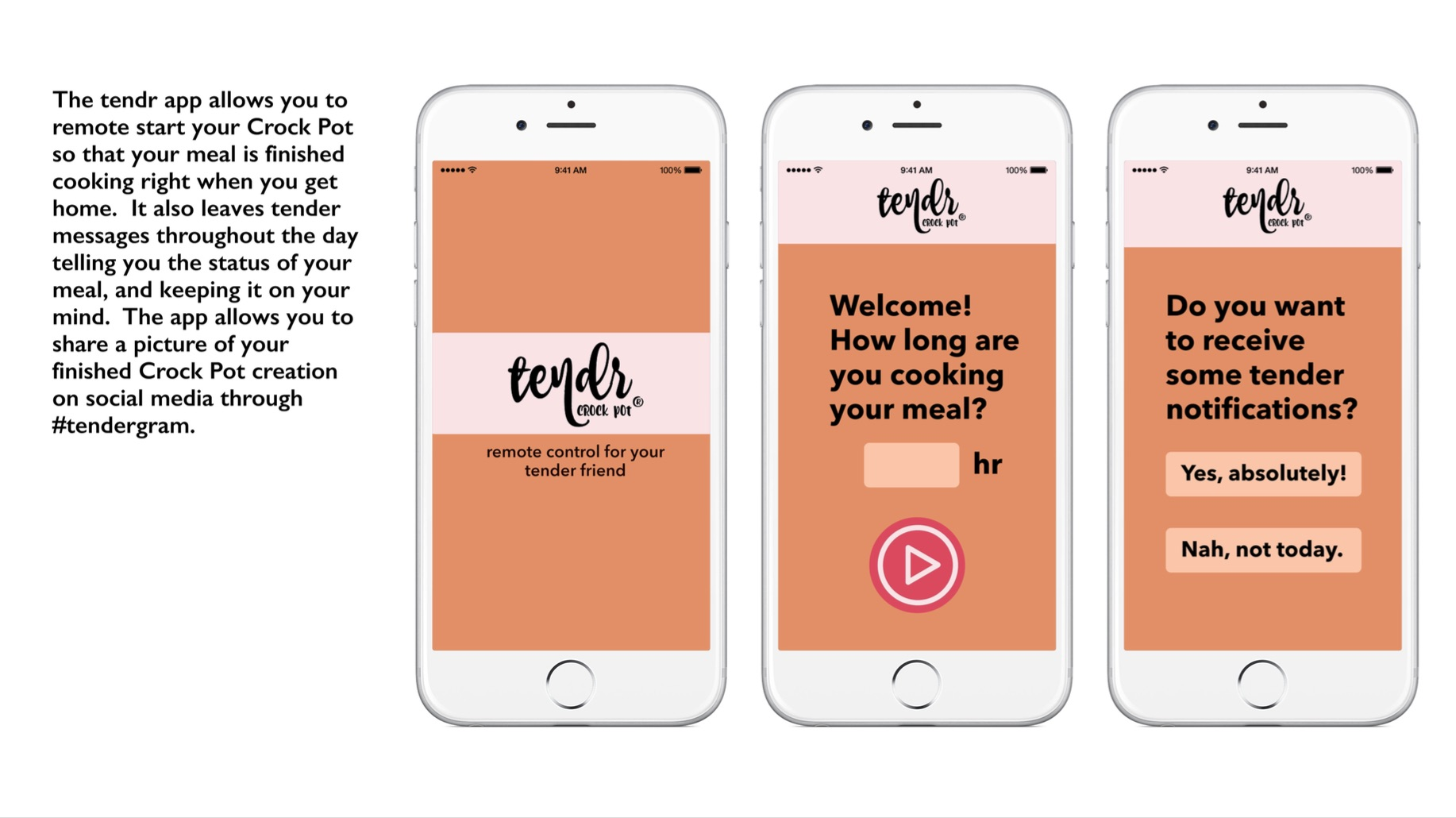 Crockpot App 1.jpg