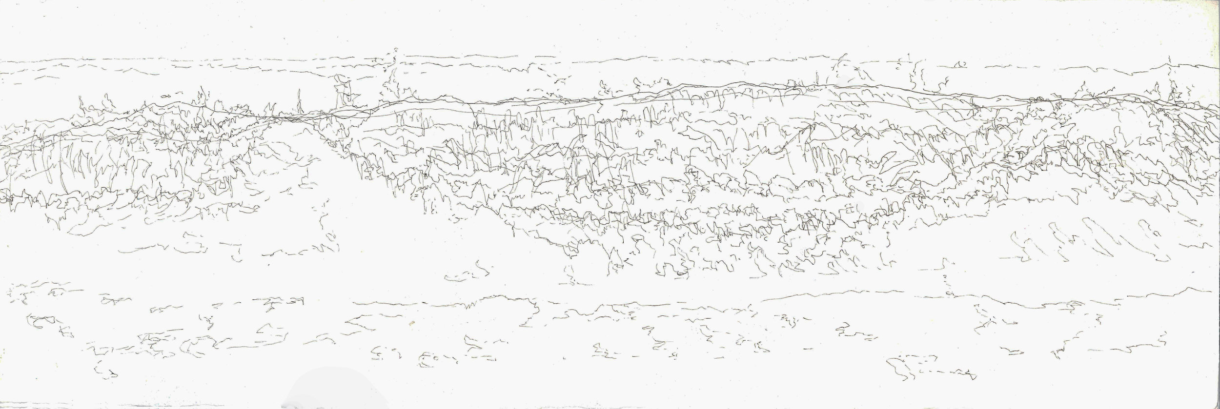Untitled #3 (Contour Drawing - Wave)