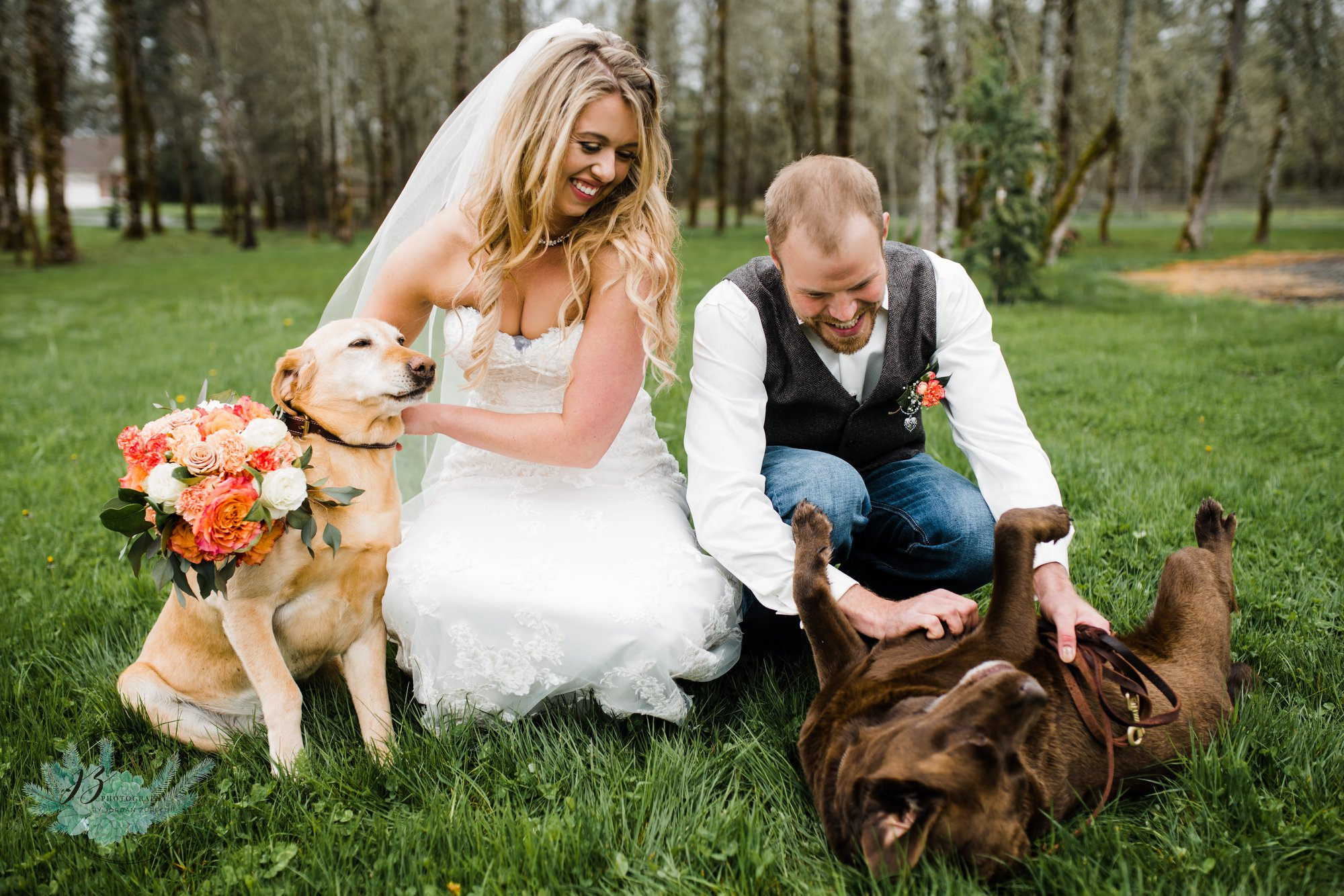 Dog_Wedding_Olympia
