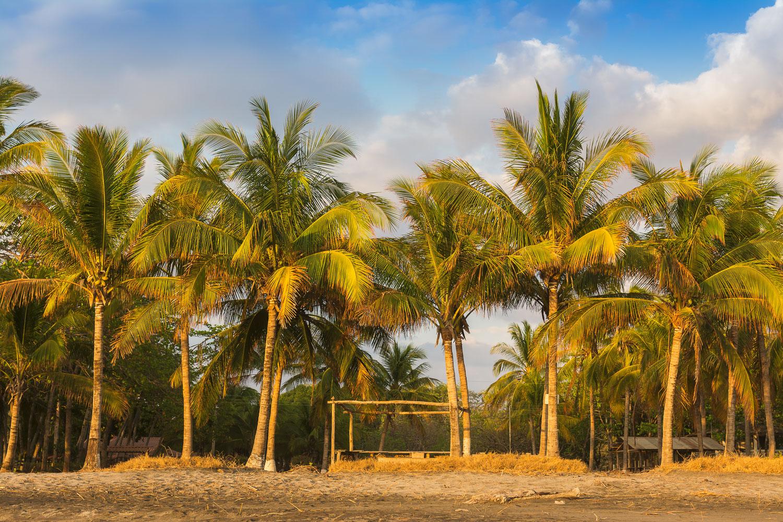 playa junquillal travel costa rica.jpg
