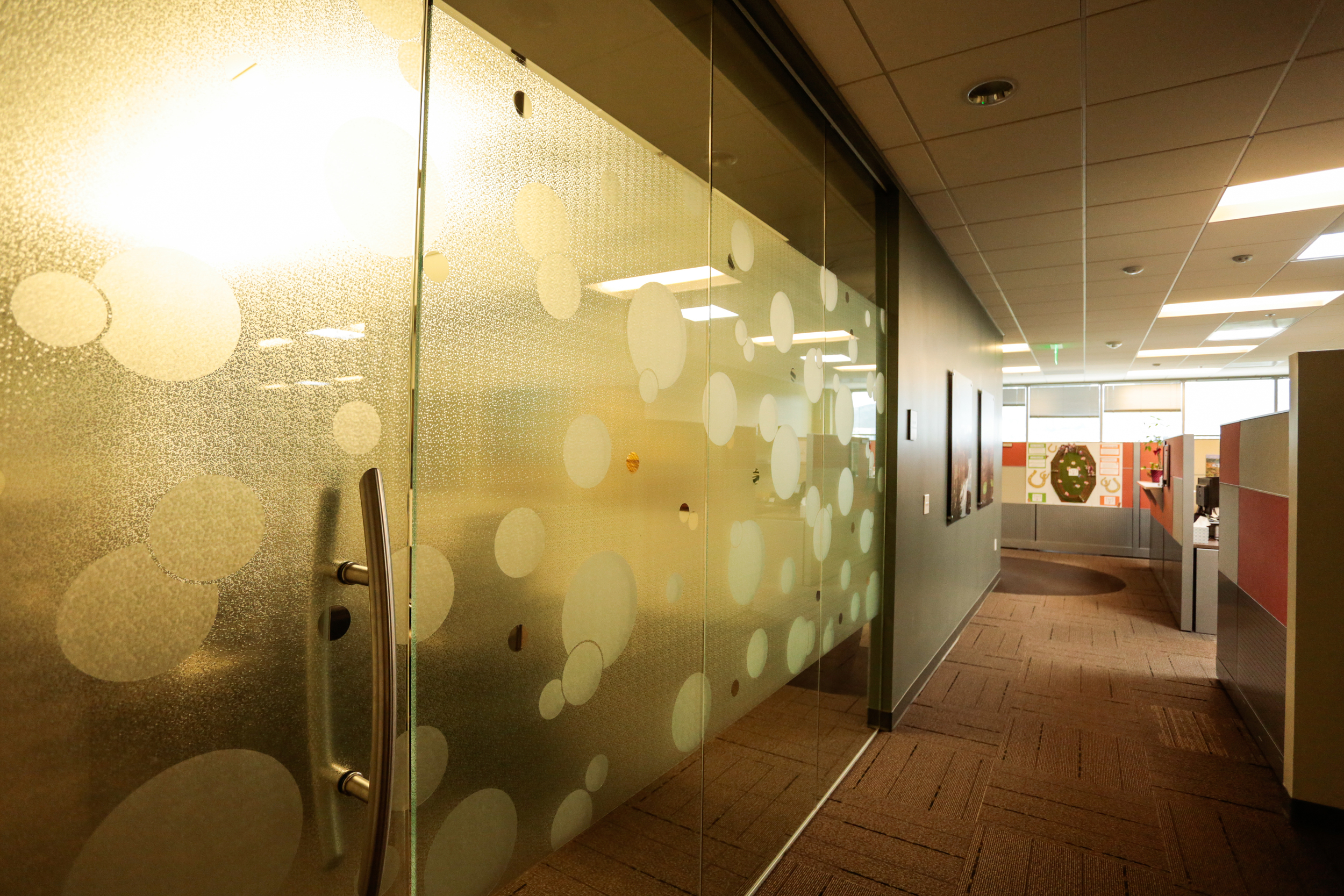 Welk Resorts - Corporate Office tenant improvement by K.D. Stahl Construction Group Inc.