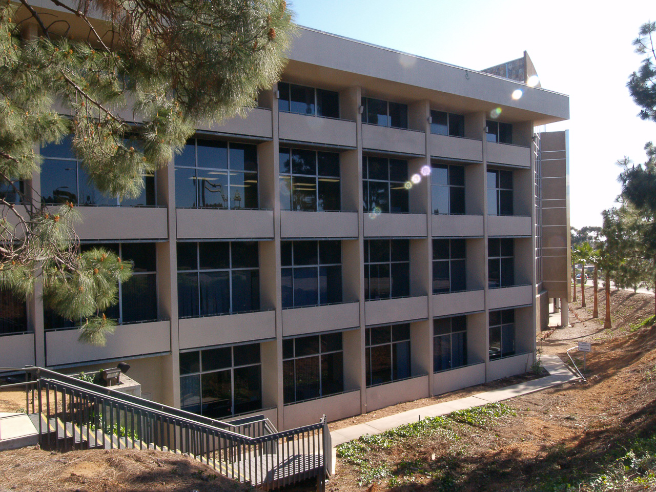 Frost Street Commercial Office Space Tenant Improvement By K.D. Stahl Construction Group Inc.