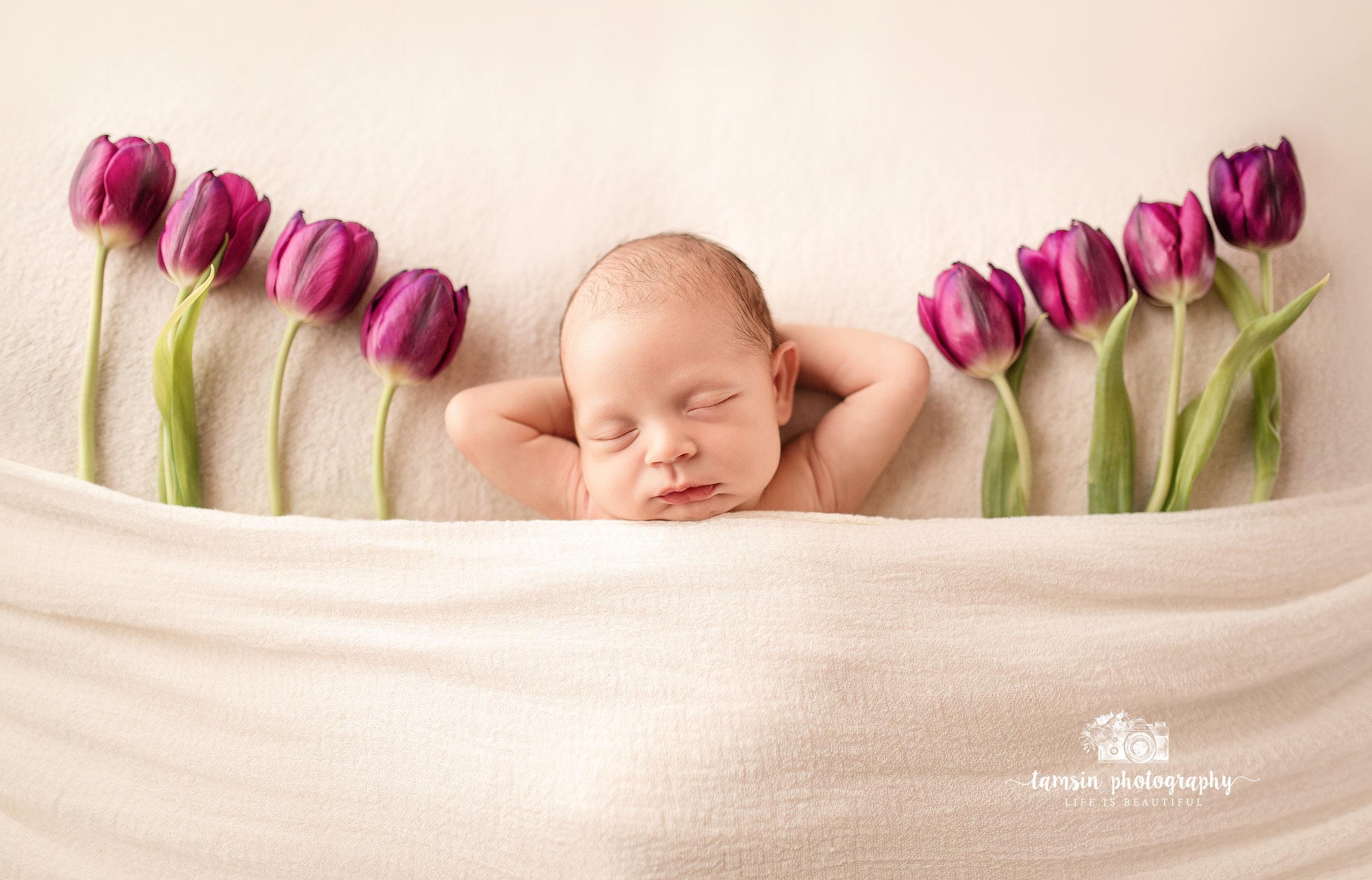Newborn Portrait Tuips Spring Photography Tamsin.jpg