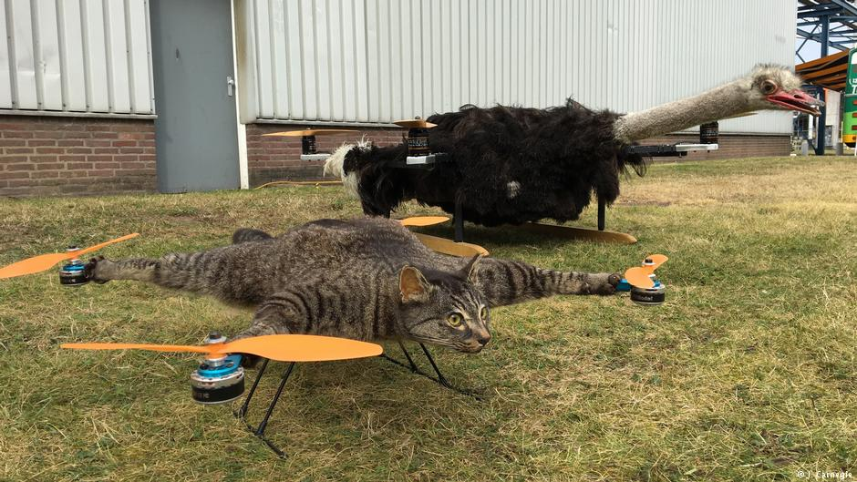 Introducing The Flying Cat and OstrichCopter.