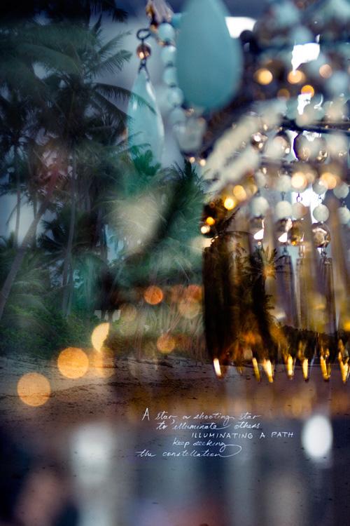 PiaJaneBijkerk_bioluminescencephotograph_March2018.jpg