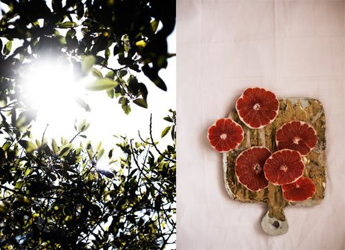 Vitamin D: delicious sun beams - soak them in! Vitamin C: grapefruit slices.