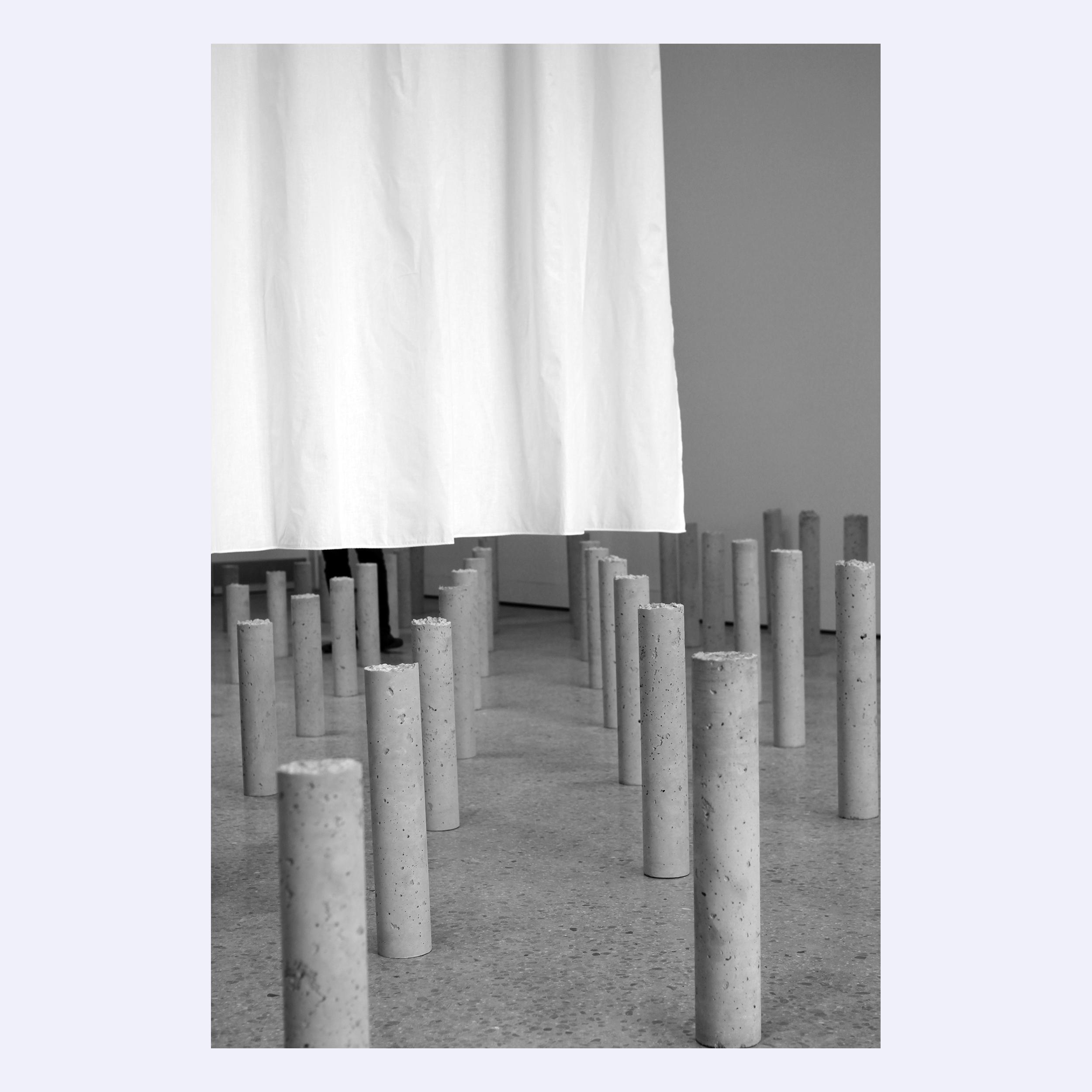 2_Fields + Array.jpg