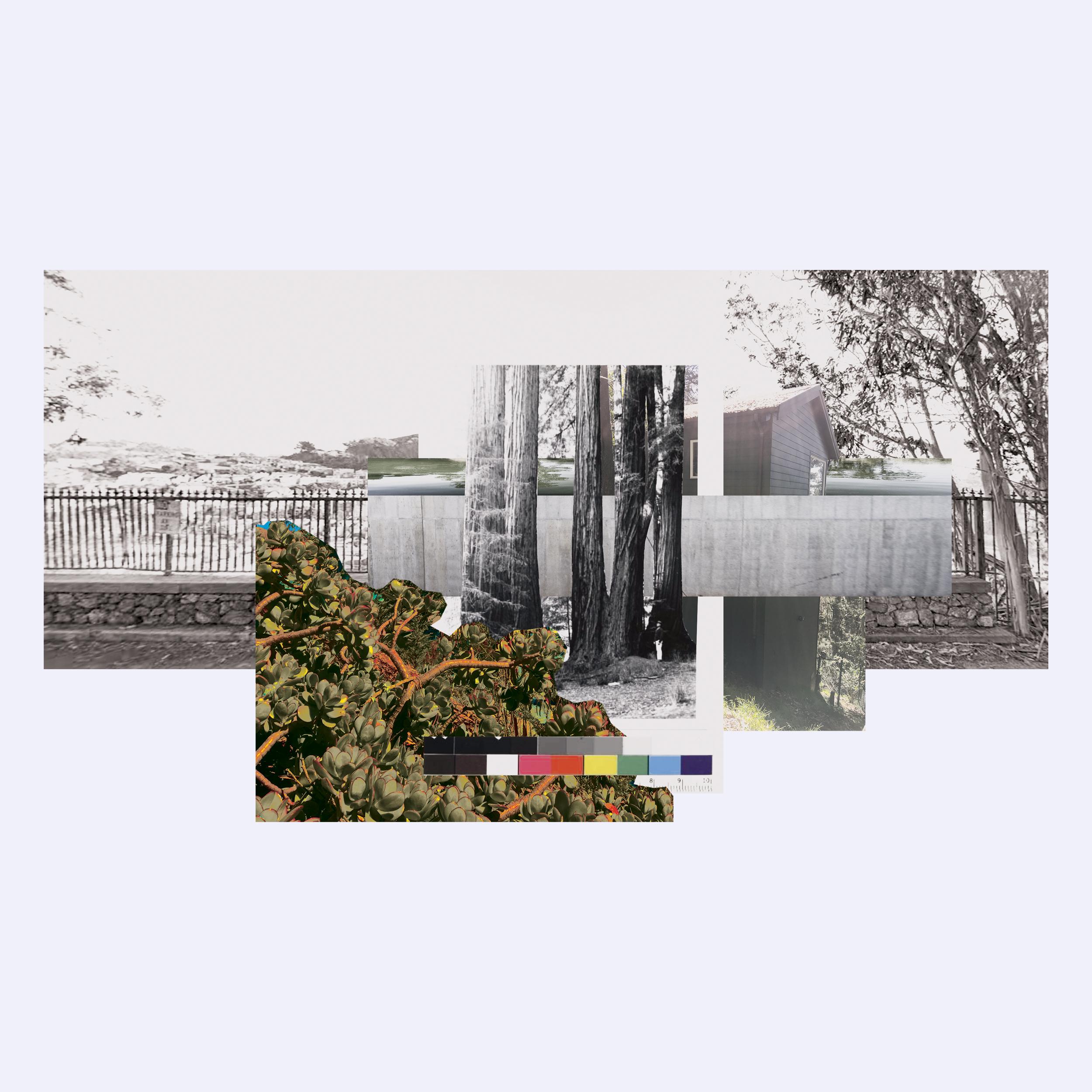 1_Collage.jpg