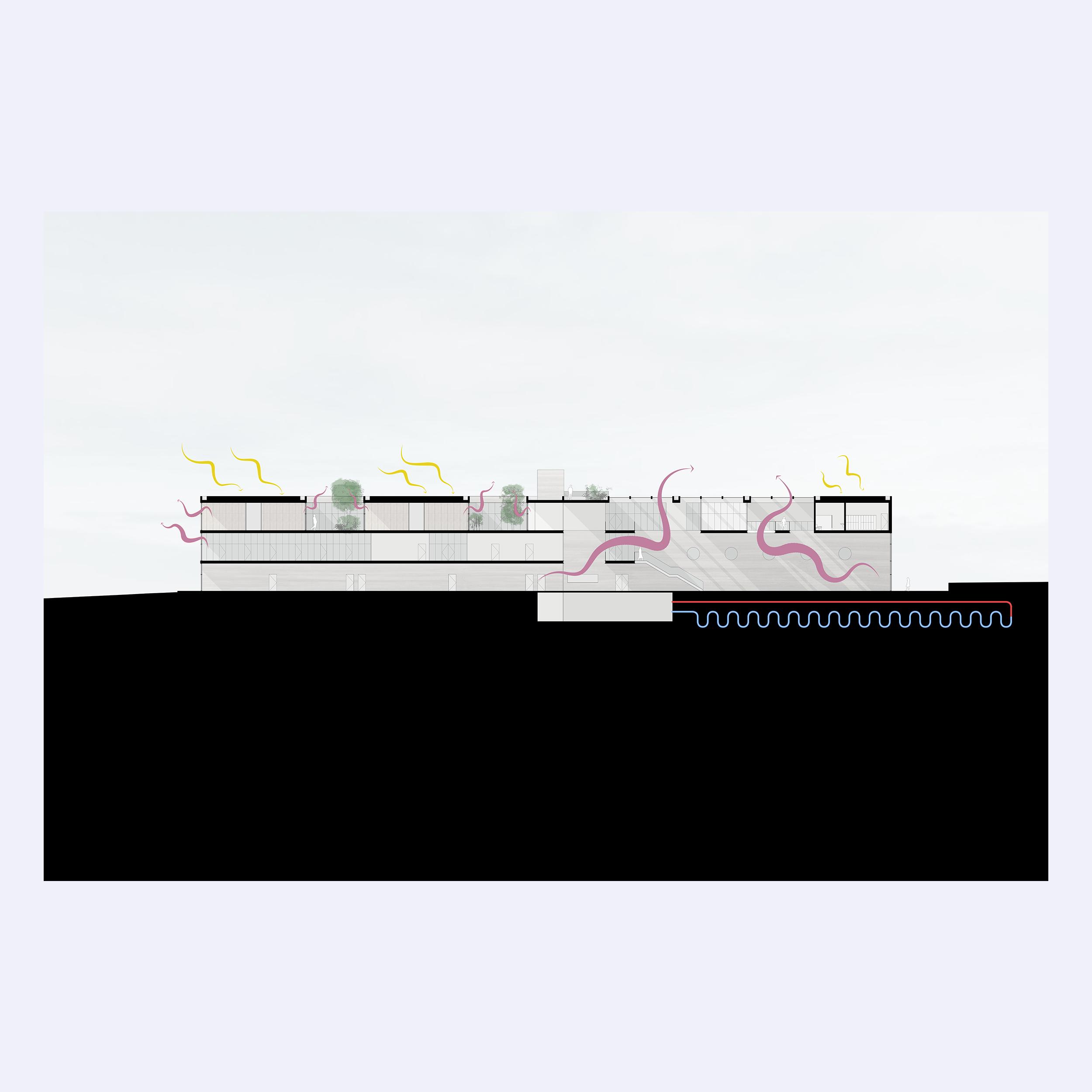6_Section.jpg