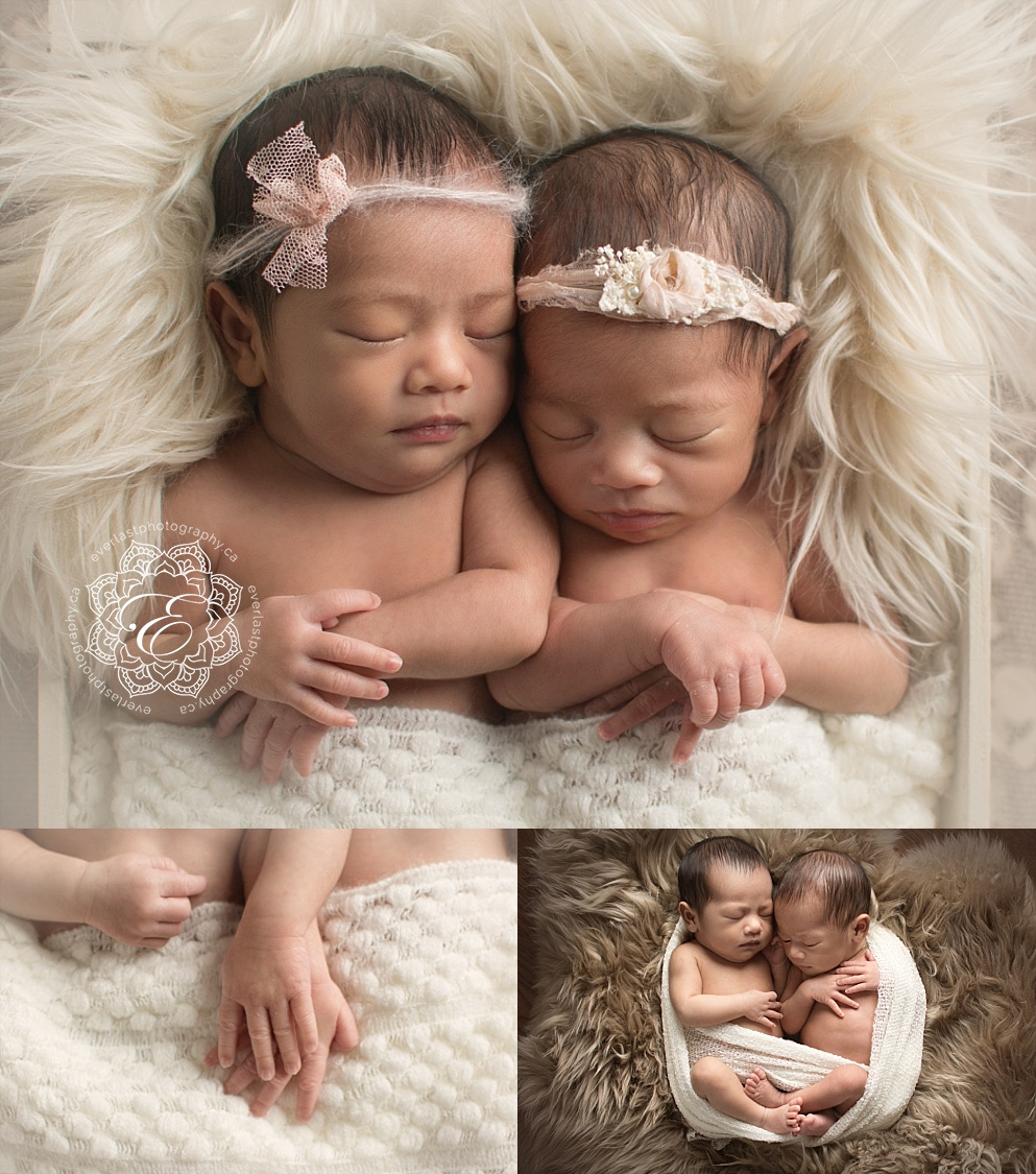 edmonton twin newborn photographers