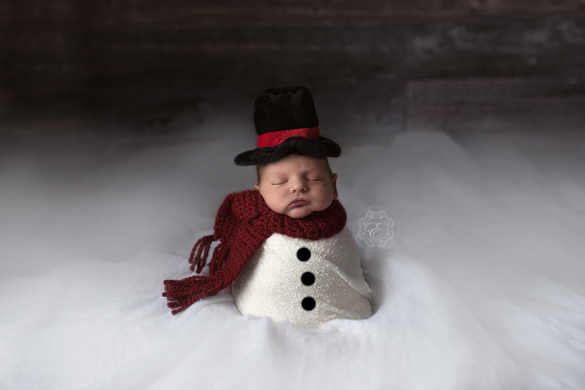 Newborn Snowman Edmonton Photographer
