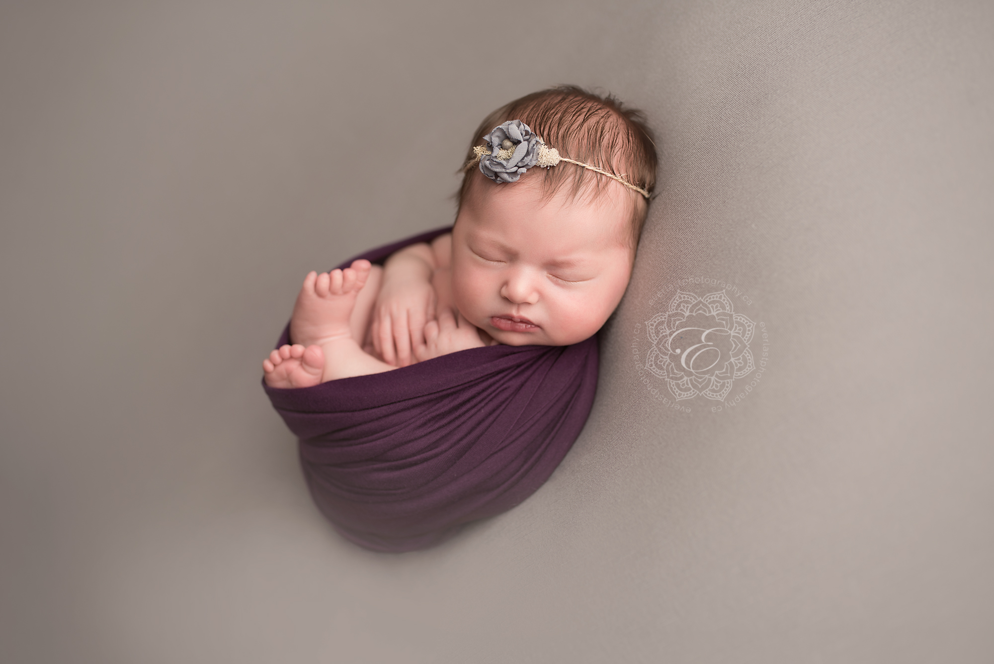 edmonton-professional-newborn-photographers