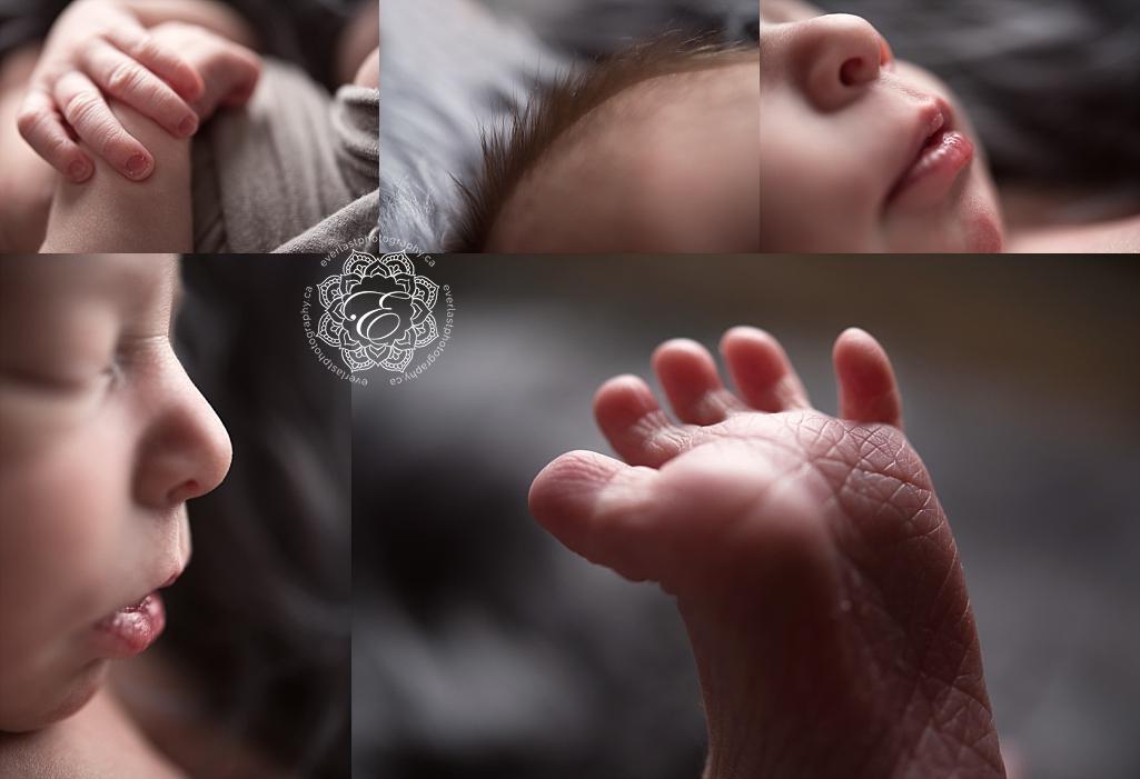 edmonton-newborn-photographers.jpg