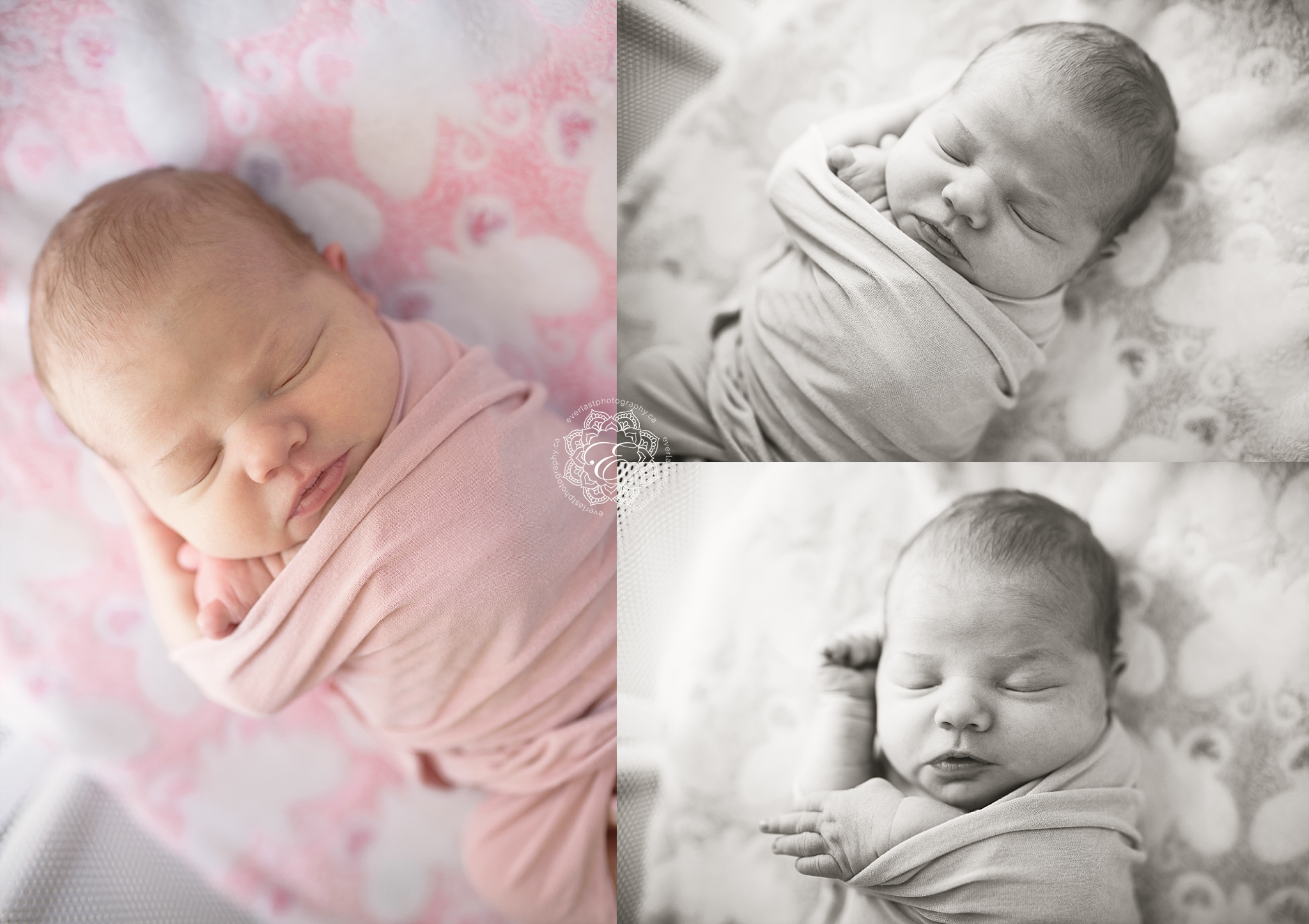 in-home-newborn-edmonton.jpg