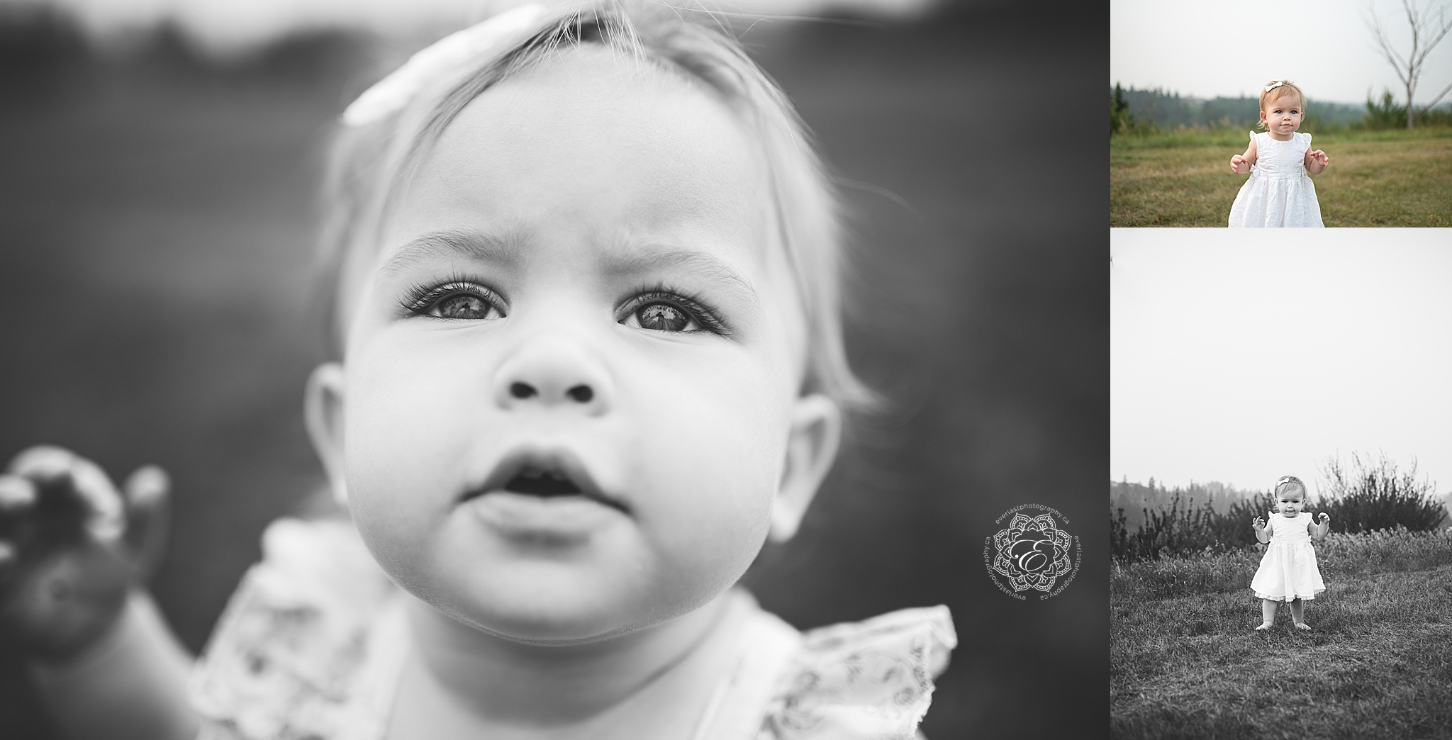 baby-milestone-photographers-edmonton.jpg