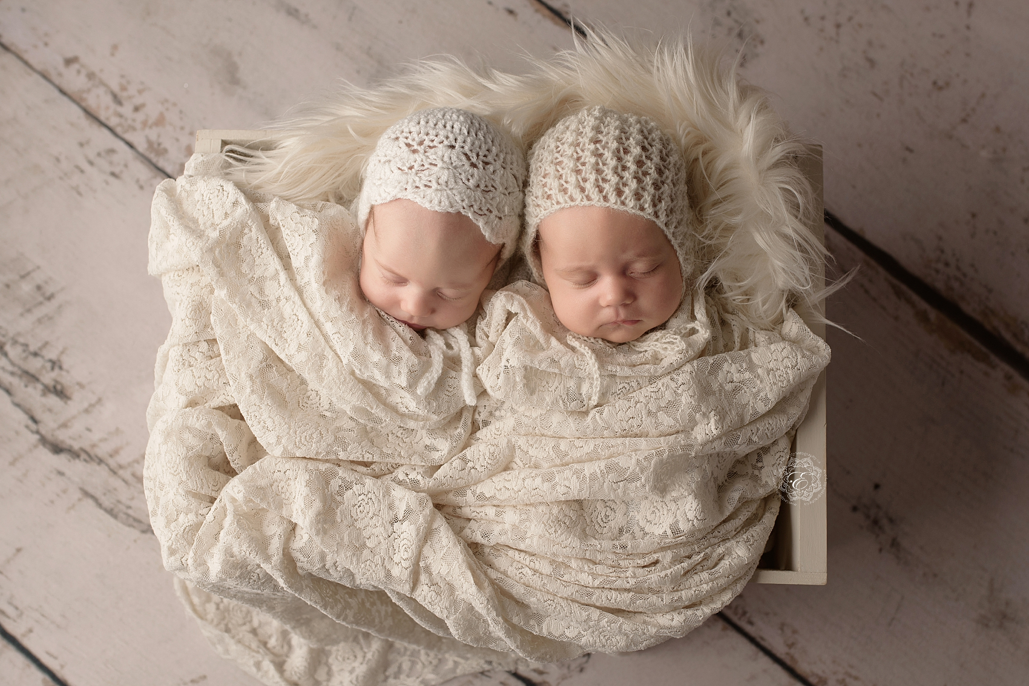edmonton-best-twin-newborn-photographer.jpg