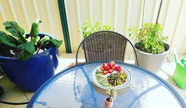 Yummy veggies from the garden.  Healthly and tasty 😍  #healthyskin #healthyinsideandout #perthsummer #eatwell #brainfood #newleafdayspa #roarfitness247 #bibralake #australia