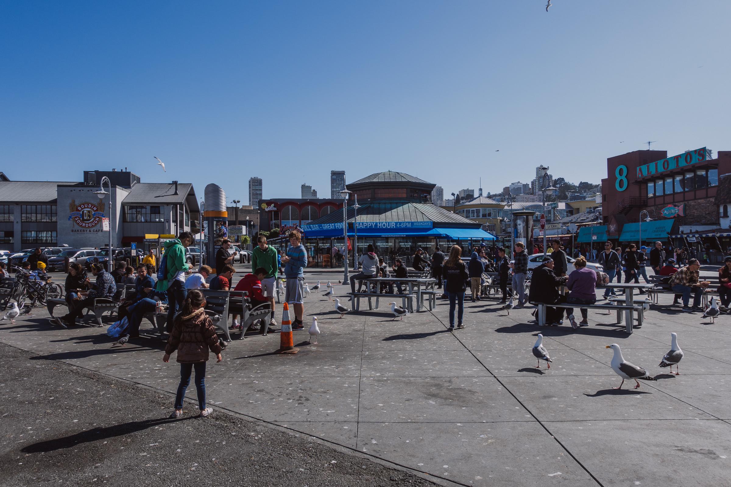 San Francisco-DSC00798DNG.jpg