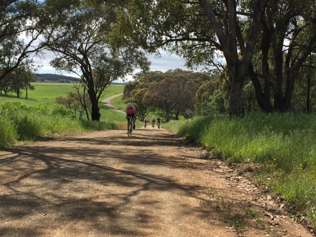 Orange Eroica - what started out as a standard Molong training ride resulted in 32k of dirt