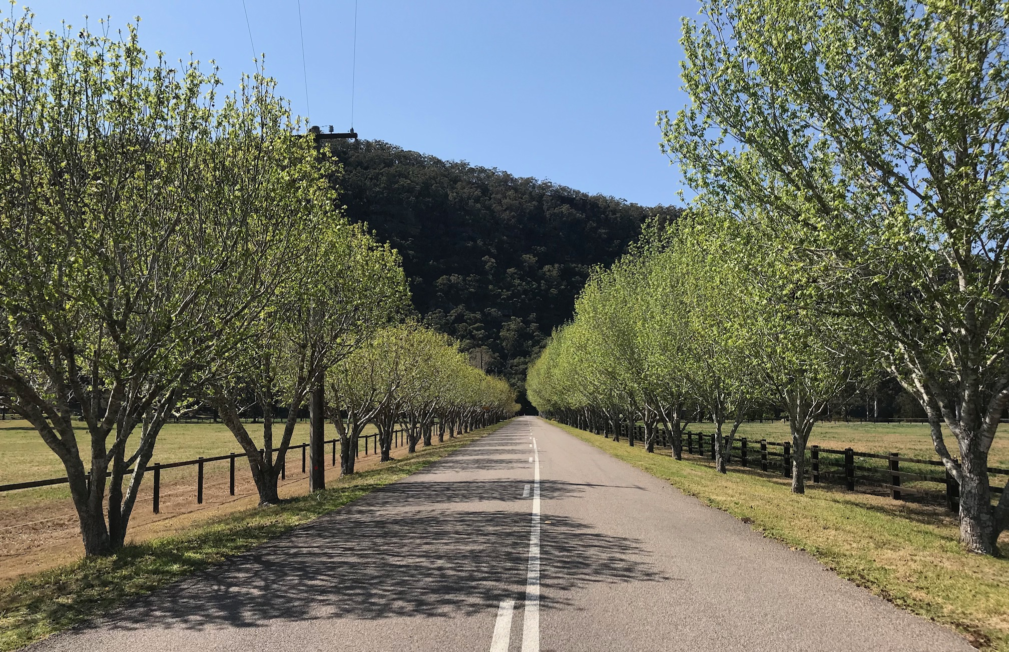 "The road from Wisemans Ferry to St Albans is the best kept secret in cycling. Very little motor traffic and just out of St Albans is this delightful panorama (picture taken on 10 Sept). This road will feature in a new event on the NSW road racing calendar in mid May 2019 that includes the St Albans "" Hell of the North "" dirt section very much in the classic Paris Roubaix tradition. Planning for this new event is now well underway."