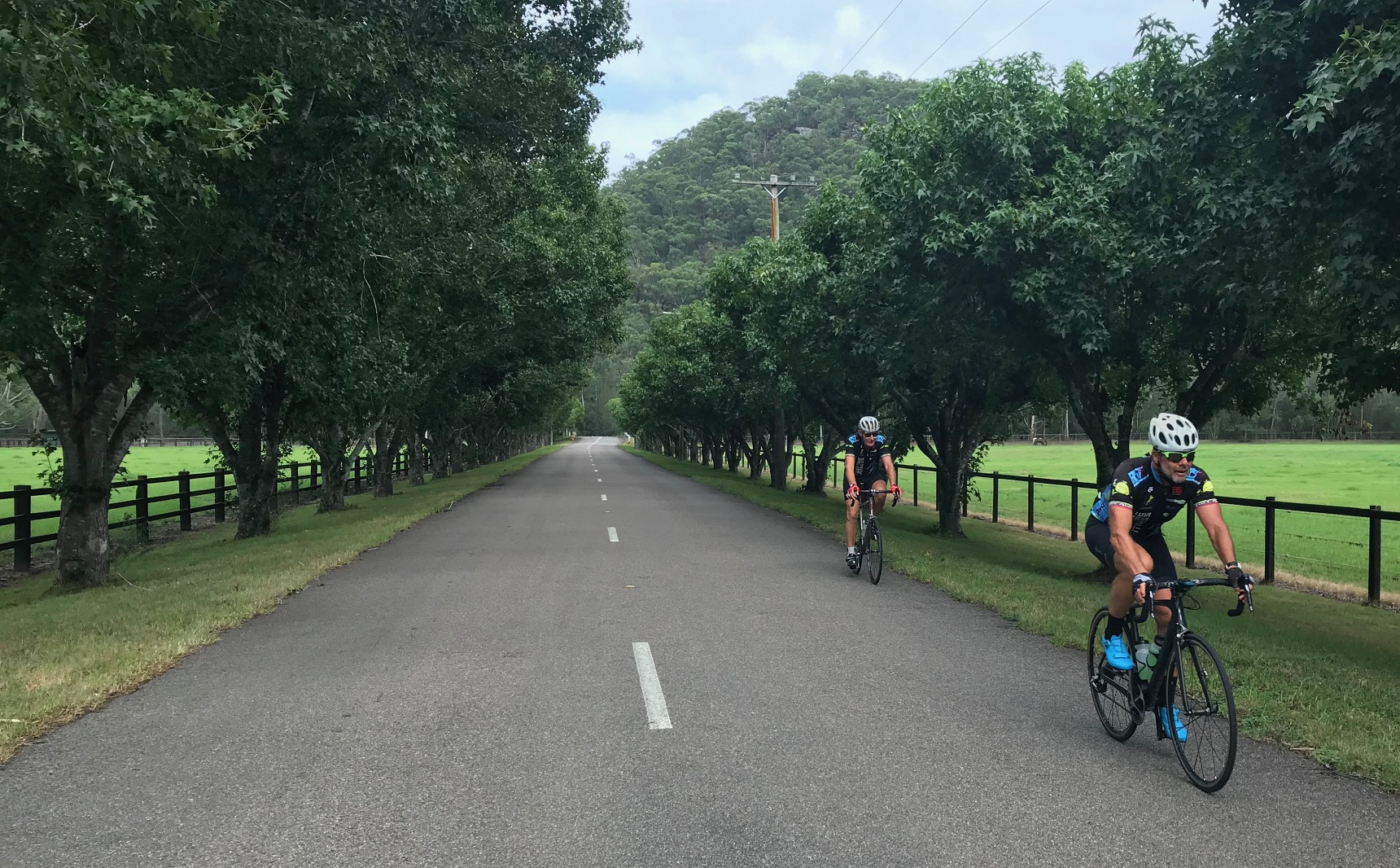 BiciSport Wisemans Loop @ 24 Feb - Marty Wright leads Raoul Westbrook past the Muskoka Farm willows outside Spencer towards the Central Mangrove climb